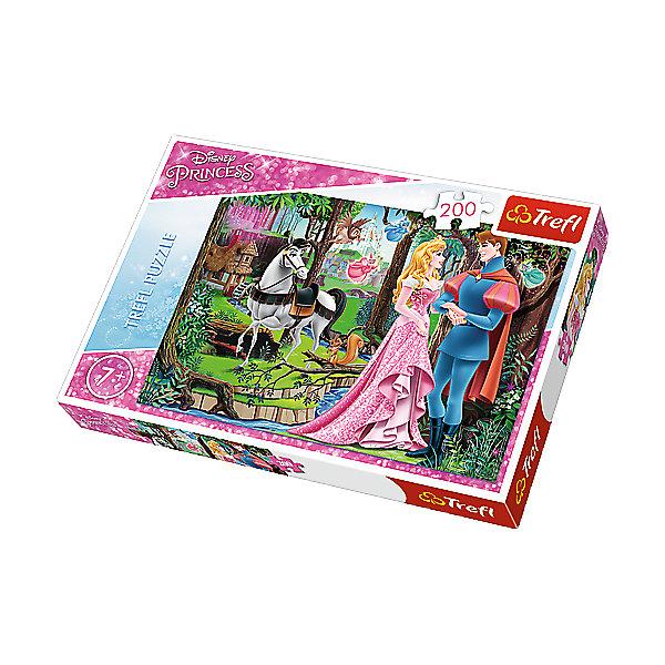 Пазлы Встреча в лесу, 200 элементовПринцессы Дисней<br>Волшебный пазл «Встреча в лесу» из 200 деталей буквально перенесет вашу малышку в чудесный мир «Disney Princess»! Собрав все элементы вместе, вы получите красочную картинку с изображением любимых героев каждой девочки: милой принцессы, встретившейся с принцем, забавной белочки, очаровательного белого коня и других ярких персонажей. <br><br> Детали пазла выполнены из высококачественного картона, имеют уникальную форму, легко соединяются между собой и образуют картинку без зазоров. Маленькая мечтательница получит много положительных эмоций от процесса сборки пазла и сможет украсить готовой картинкой свою комнату. <br><br> Количество элементов пазла: 200.  <br><br>Размер картинки в собранном виде: 48х34 см.<br><br>Ширина мм: 336<br>Глубина мм: 233<br>Высота мм: 43<br>Вес г: 428<br>Возраст от месяцев: 84<br>Возраст до месяцев: 108<br>Пол: Женский<br>Возраст: Детский<br>Количество деталей: 200<br>SKU: 5390276
