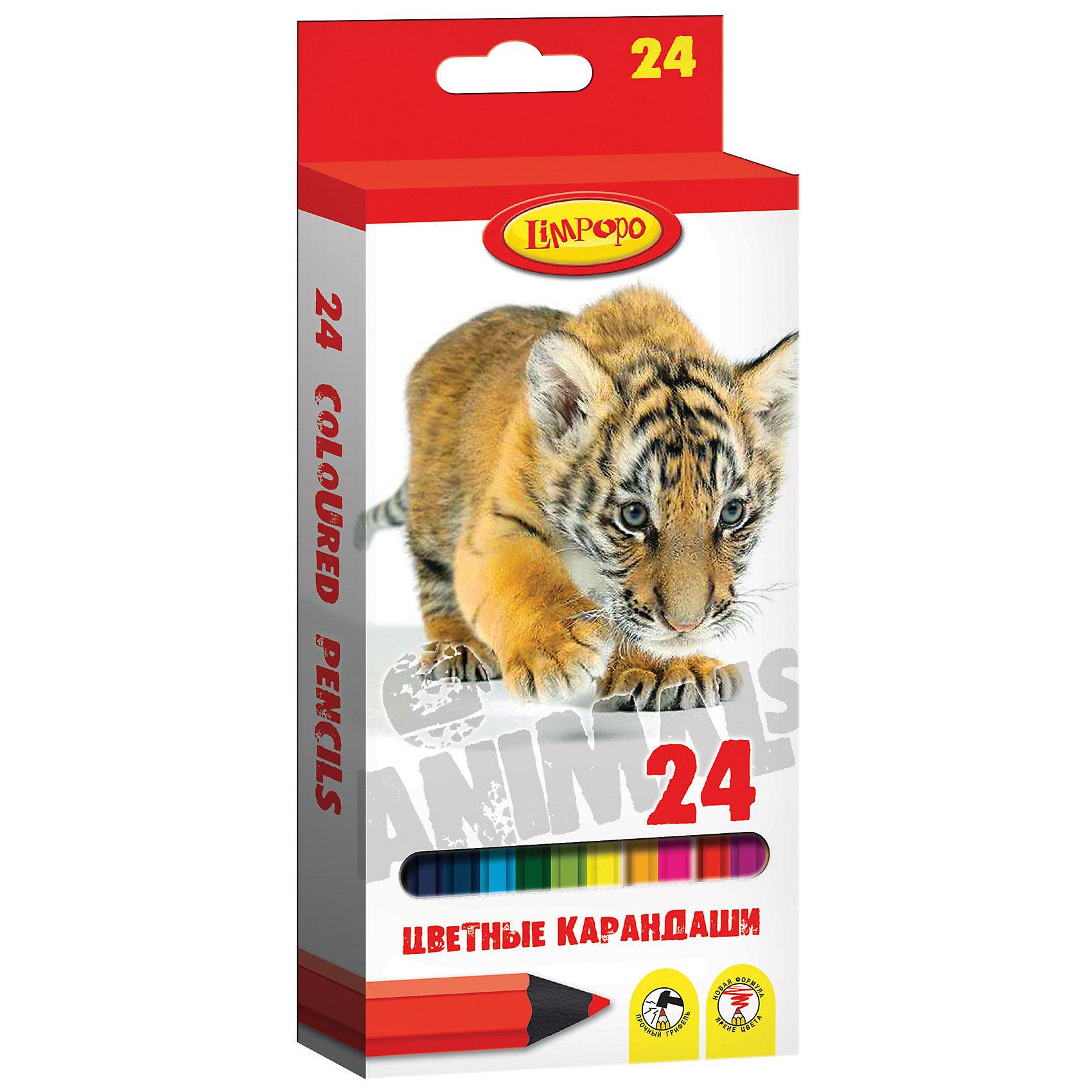 Цветные карандаши Хищники 24 цветаХарактеристики цветных карандашей Хищники:<br><br>• материал: картон, пластик, графит<br>• размер упаковки в 21х2х9 см<br>• вес товара 152 г<br>• категория товара: карандаши цветные 24 цвета<br>• бренд: Limpopo<br>• страна производитель: Китай<br><br>Карандаши 24 цвета Хищники, пластиковый корпус — это настоящая находка для начинающего художника. Они имеют качественные стержни, не стираются и не выцветают со временем. А большая цветовая палитра позволит изобразить мир на бумаге в ярких тонах. Ваш ребенок будет в восторге!<br><br>Цветные карандаши Хищники от торговой марки Limpopo можно купить в нашем интернет-магазине.<br><br>Ширина мм: 8<br>Глубина мм: 200<br>Высота мм: 90<br>Вес г: 150<br>Возраст от месяцев: 48<br>Возраст до месяцев: 144<br>Пол: Унисекс<br>Возраст: Детский<br>SKU: 5390289