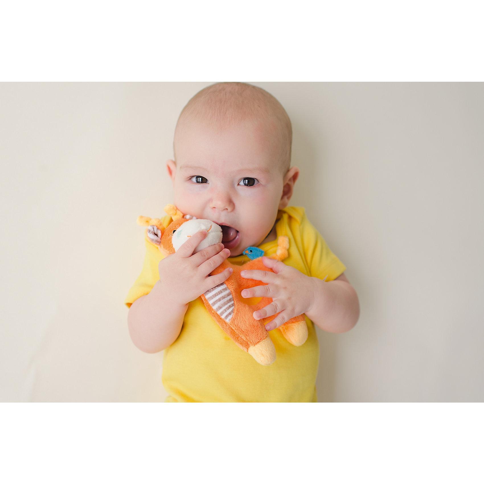 Погремушка Жираф, Zoocchini, оранжевыйПогремушки<br>Погремушка Жираф, Zoocchini, оранжевый.<br><br>Характеристики:<br><br>- Материал: полиэстер<br>- Цвет: оранжевый<br>- Высота игрушки: 17,5 см.<br><br>Мягкая, приятная на ощупь погремушка в виде забавного жирафа заставит вашего ребёнка улыбаться! Яркий цвет, приятный звук погремушки будут способствовать развитию слухового и цветового восприятия, мелкой моторики рук и концентрации внимания малыша. Погремушка Жираф составит прекрасную пару одеялу с игрушкой Zoocchini.<br><br>Погремушку Жираф, Zoocchini, оранжевую можно купить в нашем интернет-магазине.<br><br>Ширина мм: 120<br>Глубина мм: 75<br>Высота мм: 205<br>Вес г: 72<br>Возраст от месяцев: 0<br>Возраст до месяцев: 12<br>Пол: Унисекс<br>Возраст: Детский<br>SKU: 5392936