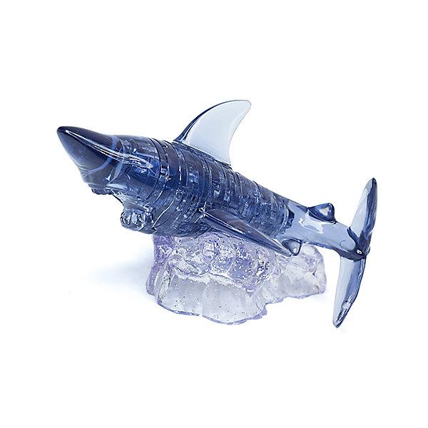 Кристаллический пазл 3D Акула, Crystal Puzzle3D пазлы<br>Кристаллический пазл 3D Акула, Crystal Puzzle (Кристал Пазл)<br><br>Характеристики:<br><br>• яркий объемный пазл<br>• размер готовой фигурки: 9 см<br>• количество деталей: 37<br>• высокая сложность<br>• размер упаковки: 5х14х10 см<br>• вес: 154 грамма<br>• материал: пластик<br><br>Акула неизменно наводит ужас на путешественников. Попробуйте собрать эту коварную хищницу с помощью 3D пазлов от Crystal Puzzle. В набор входят 37 деталей, справиться с которыми вам поможет подробная инструкция. Все детали пронумерованы. Вам останется только разложить их по номерам и соединить. Настоящие профессионалы могут попробовать собрать фигурку самостоятельно, без подсказок. Установите готовую фигурку на подставку, и сияющая акула всегда будет радовать вас своей ужасающей красотой!<br><br>Кристаллический пазл 3D Акула, Crystal Puzzle (Кристал Пазл) можно купить в нашем интернет-магазине.<br><br>Ширина мм: 100<br>Глубина мм: 140<br>Высота мм: 50<br>Вес г: 154<br>Возраст от месяцев: 120<br>Возраст до месяцев: 2147483647<br>Пол: Унисекс<br>Возраст: Детский<br>SKU: 5397240