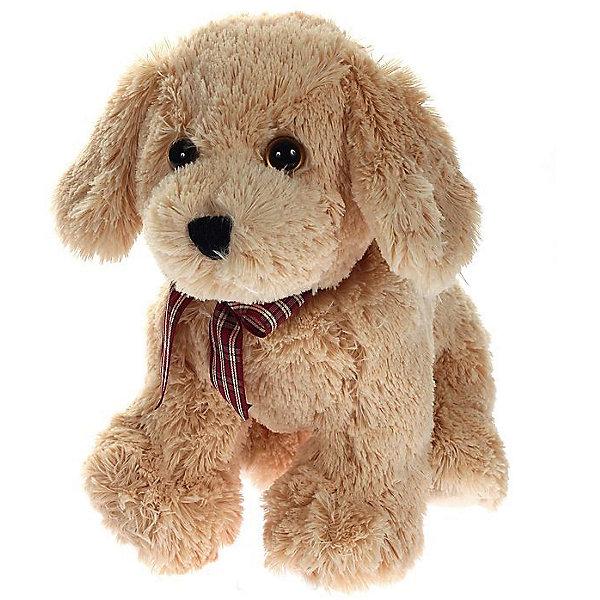 Мягкая игрушка Щенок (бежевый) Goldwyn, 25 см, Classic, TyСимвол года<br>Мягкая игрушка Щенок (бежевый) Goldwyn, 25 см, Classic, Ty (Тай)<br><br>Характеристики:<br><br>• способствует развитию мелкой моторики<br>• приятный на ощупь<br>• высота игрушки: 25 см<br>• не содержит токсичных материалов, опасных для здоровья ребёнка<br>• материал: ткань, искусственный мех, пластик <br>• наполнитель: синтепон<br>• вес: 267 грамм<br><br>Малыш Goldwyn станет верным другом для вашего малыша. Щенок имеет невероятно милую мордашку, которая не оставит равнодушными детей и взрослых. Щенок изготовлен из мягкого, приятного материала. А внутренние гранулы способствуют развитию мелкой моторики и тактильных ощущений. На шее щенка красуется клетчатый бант, который делает Goldwyn еще более милым и привлекательным.<br><br>Мягкую игрушку Щенок (бежевый) Goldwyn, 25 см, Classic, Ty (Тай) вы можете купить в нашем интернет-магазине.<br>Ширина мм: 250; Глубина мм: 250; Высота мм: 250; Вес г: 267; Возраст от месяцев: 36; Возраст до месяцев: 144; Пол: Унисекс; Возраст: Детский; SKU: 5399792;