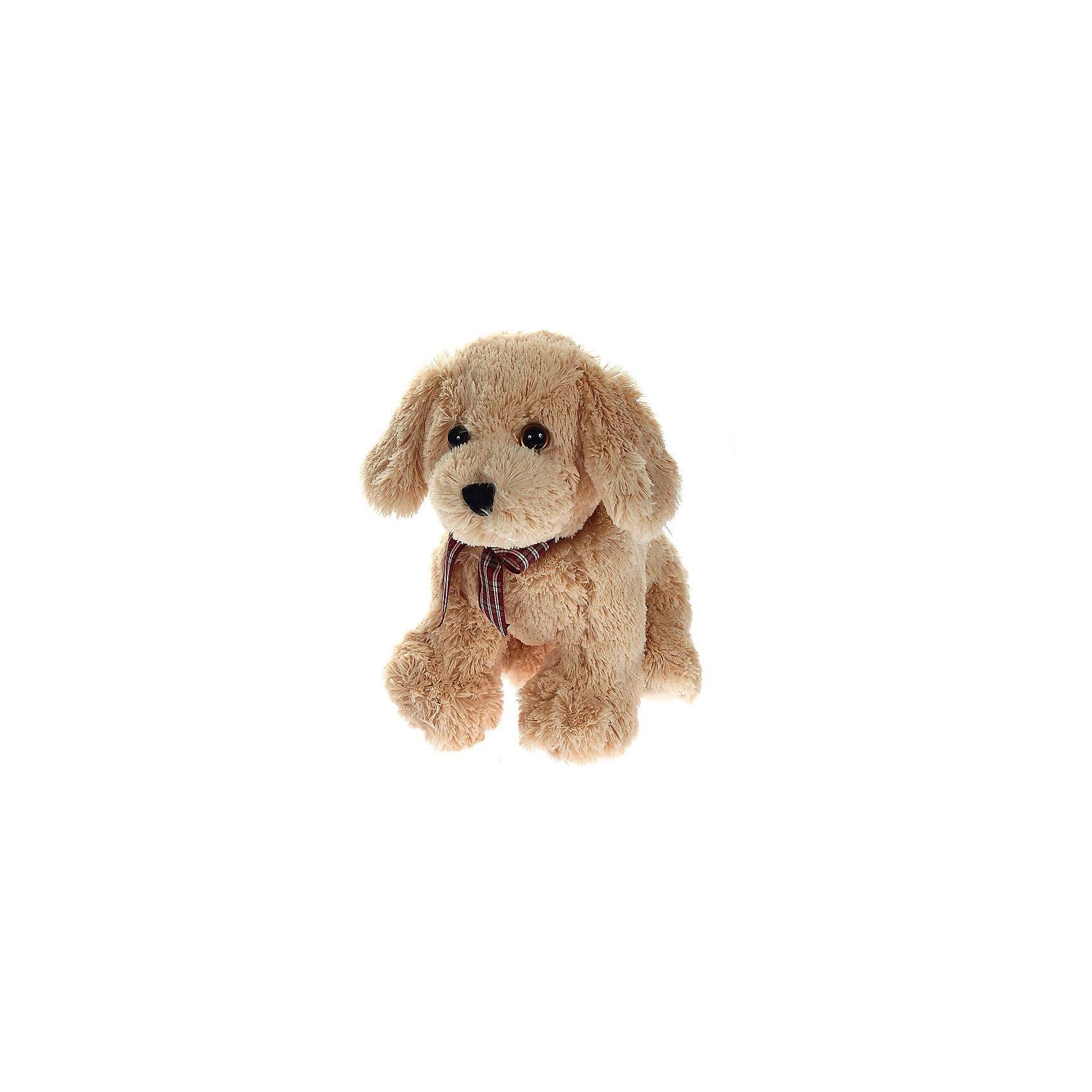 Мягкая игрушка Щенок (бежевый) Goldwyn, 25 см, Classic, TyМягкая игрушка Щенок (бежевый) Goldwyn, 25 см, Classic, Ty (Тай)<br><br>Характеристики:<br><br>• способствует развитию мелкой моторики<br>• приятный на ощупь<br>• высота игрушки: 25 см<br>• не содержит токсичных материалов, опасных для здоровья ребёнка<br>• материал: ткань, искусственный мех, пластик <br>• наполнитель: синтепон<br>• вес: 267 грамм<br><br>Малыш Goldwyn станет верным другом для вашего малыша. Щенок имеет невероятно милую мордашку, которая не оставит равнодушными детей и взрослых. Щенок изготовлен из мягкого, приятного материала. А внутренние гранулы способствуют развитию мелкой моторики и тактильных ощущений. На шее щенка красуется клетчатый бант, который делает Goldwyn еще более милым и привлекательным.<br><br>Мягкую игрушку Щенок (бежевый) Goldwyn, 25 см, Classic, Ty (Тай) вы можете купить в нашем интернет-магазине.<br><br>Ширина мм: 250<br>Глубина мм: 250<br>Высота мм: 250<br>Вес г: 267<br>Возраст от месяцев: 36<br>Возраст до месяцев: 144<br>Пол: Унисекс<br>Возраст: Детский<br>SKU: 5399792