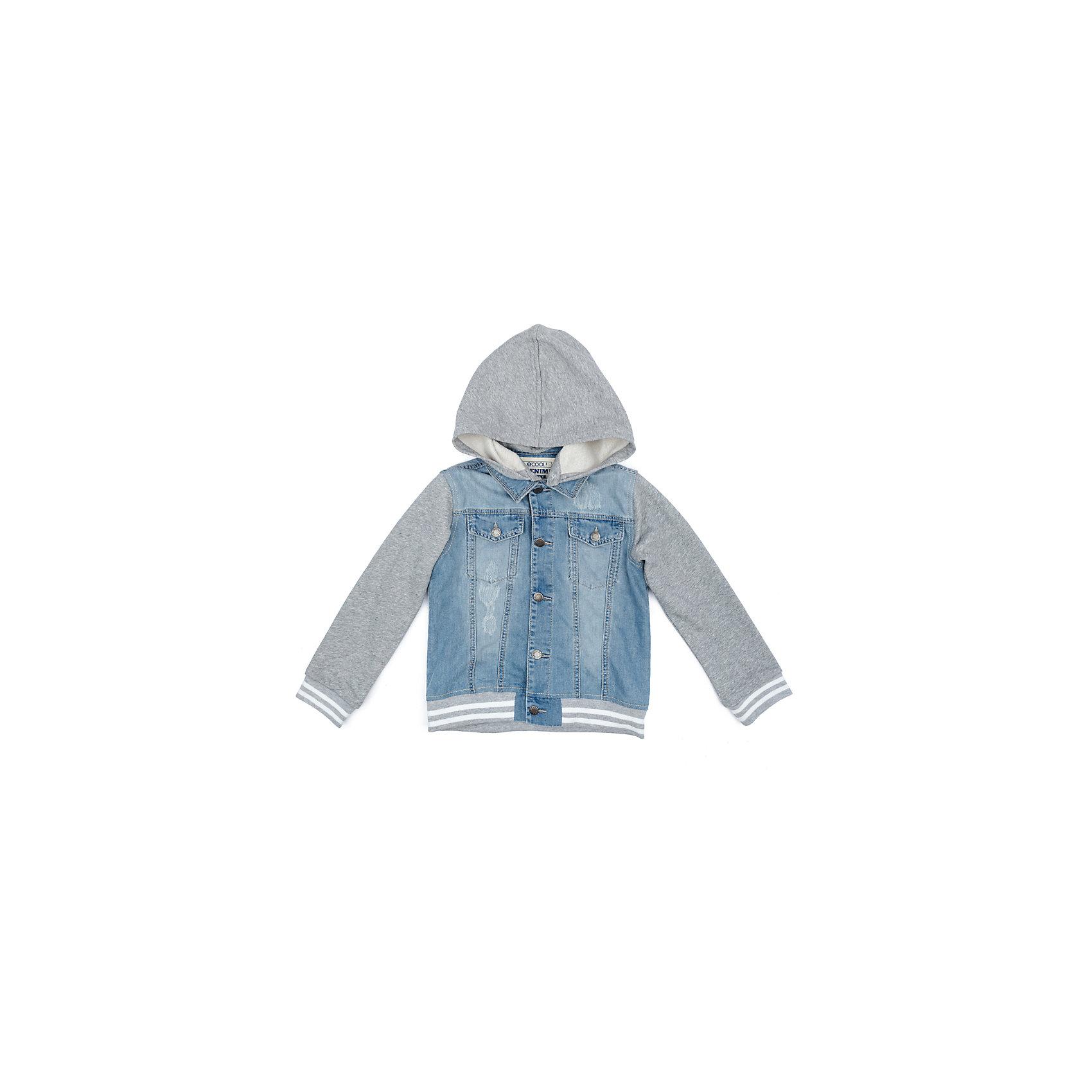Куртка для мальчика ScoolДжинсовый бум<br>Характеристики товара:<br><br>• цвет: голубой/серый<br>• состав: 80% хлопок, 20% полиэстер<br>• без утеплителя<br>• температурный режим: от +10°С до +20°С<br>• сезон: демисезон<br>• рукава и капюшон из мягкого трикотажа<br>• джинсова ткань с эффектом потертостей<br>• отложной воротник<br>• застежка: пуговицы<br>• съёмный капюшон на кнопках<br>• мягкие резинки на манжетах и по низу изделия<br>• карманы на груди<br>• страна бренда: Германия<br>• страна производства: Китай<br><br>Джинсовая куртка для мальчика Scool. Эта эффектная модная демисезонная куртка обязательно понравится ребенку! Модель выполнена из 2-х видов ткани - натуральной джинсовой и трикотажа (капюшон и рукава). При необходимости капюшон можно отстегнуть - он крепится на застежках-кнопках. Мягкие резинки на манжетах и по низу изделия. Джинсовая ткань с эффектом потертости.<br><br>Куртку для мальчика от известного бренда Scool можно купить в нашем интернет-магазине.<br><br>Ширина мм: 356<br>Глубина мм: 10<br>Высота мм: 245<br>Вес г: 519<br>Цвет: белый<br>Возраст от месяцев: 132<br>Возраст до месяцев: 144<br>Пол: Мужской<br>Возраст: Детский<br>Размер: 152,158,164,134,140,146<br>SKU: 5406658