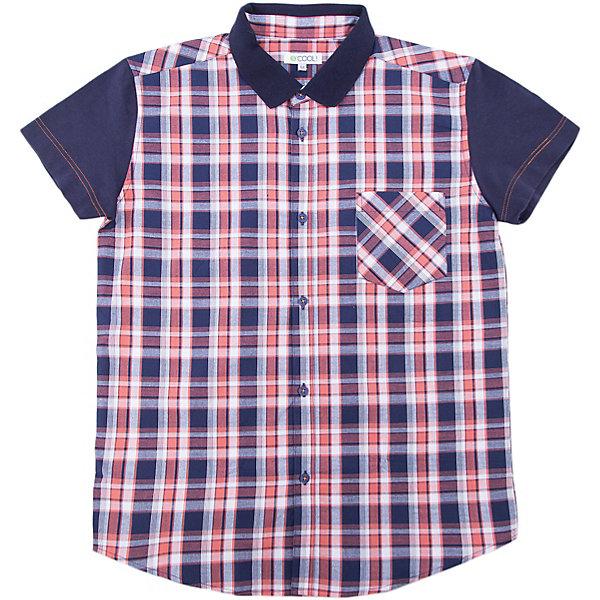 Рубашка для мальчика ScoolБлузки и рубашки<br>Характеристики товара:<br><br>• цвет: чёрный/красный<br>• состав: 100% хлопок<br>• отложной воротник<br>• застежка: пуговицы<br>• накладной карман на груди<br>• страна бренда: Германия<br>• страна производства: Китай<br><br>Рубашка в клетку для мальчика Scool. Эффектная рубашка с коротким рукавом для мальчика в стиле кантри.  Практична и очень удобна для повседневной носки. Ткань  мягкая и приятная на ощупь, не раздражает нежную детскую кожу. Рубашка с отложным воротничком и накладным карманом.<br><br>Сорочку для мальчика от известного бренда Scool можно купить в нашем интернет-магазине.<br><br>Ширина мм: 356<br>Глубина мм: 10<br>Высота мм: 245<br>Вес г: 519<br>Цвет: белый<br>Возраст от месяцев: 108<br>Возраст до месяцев: 120<br>Пол: Мужской<br>Возраст: Детский<br>Размер: 140,164,134,158,152,146<br>SKU: 5406665
