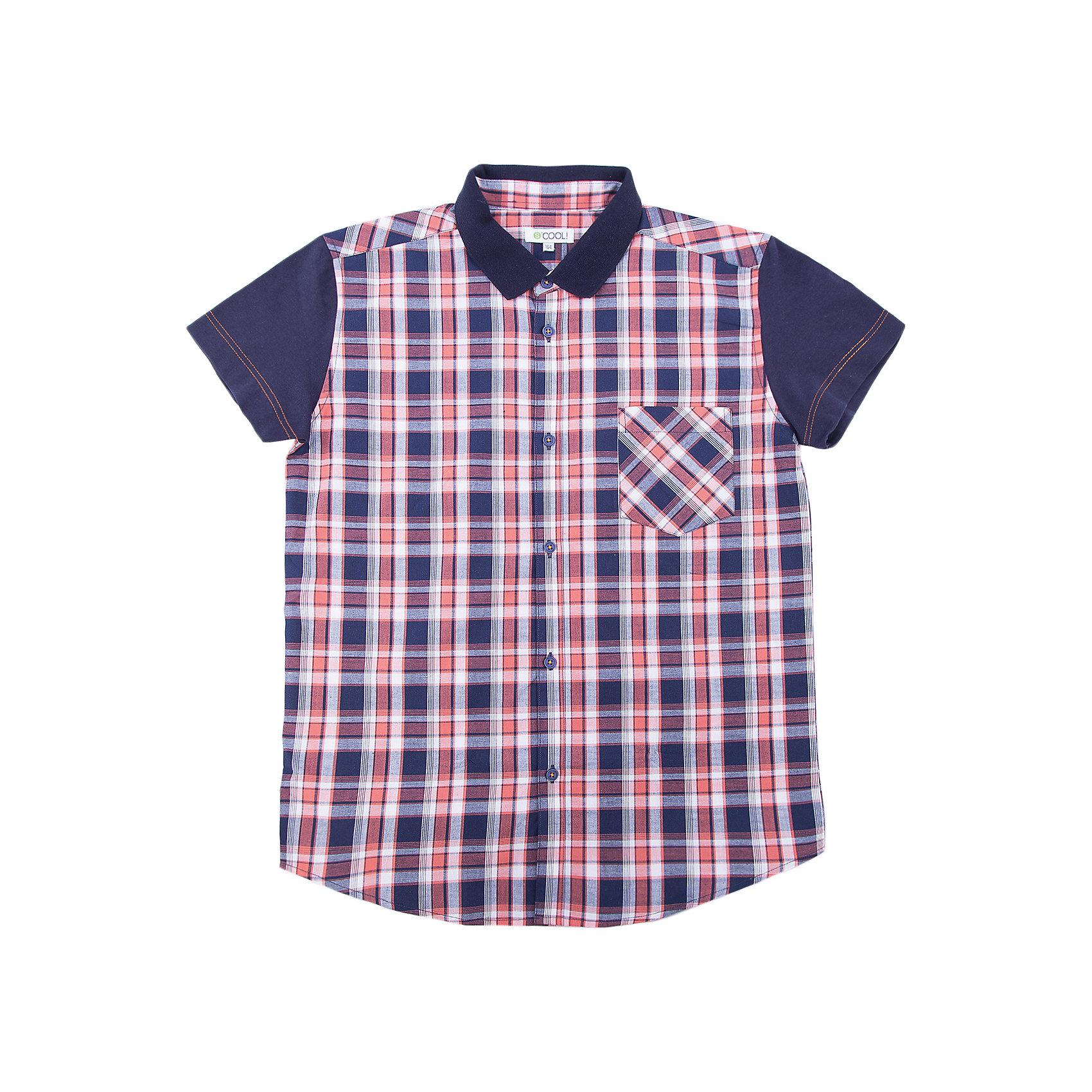 Рубашка для мальчика ScoolБлузки и рубашки<br>Характеристики товара:<br><br>• цвет: чёрный/красный<br>• состав: 100% хлопок<br>• отложной воротник<br>• застежка: пуговицы<br>• накладной карман на груди<br>• страна бренда: Германия<br>• страна производства: Китай<br><br>Рубашка в клетку для мальчика Scool. Эффектная рубашка с коротким рукавом для мальчика в стиле кантри.  Практична и очень удобна для повседневной носки. Ткань  мягкая и приятная на ощупь, не раздражает нежную детскую кожу. Рубашка с отложным воротничком и накладным карманом.<br><br>Сорочку для мальчика от известного бренда Scool можно купить в нашем интернет-магазине.<br><br>Ширина мм: 356<br>Глубина мм: 10<br>Высота мм: 245<br>Вес г: 519<br>Цвет: белый<br>Возраст от месяцев: 156<br>Возраст до месяцев: 168<br>Пол: Мужской<br>Возраст: Детский<br>Размер: 164,134,140,146,152,158<br>SKU: 5406665