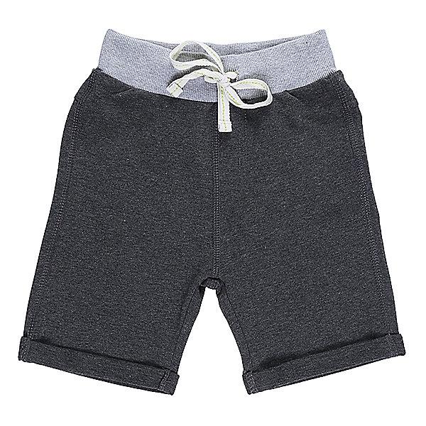 Шорты для мальчика Sweet BerryШорты, бриджи, капри<br>Мягкие, трикотажные шорты с отворотом для мальчика. Спереди два прорезных кармана. Пояс-резинка дополнен шнуром для регулирования объема.<br>Состав:<br>95%хлопок 5%эластан<br><br>Ширина мм: 191<br>Глубина мм: 10<br>Высота мм: 175<br>Вес г: 273<br>Цвет: серый<br>Возраст от месяцев: 48<br>Возраст до месяцев: 60<br>Пол: Мужской<br>Возраст: Детский<br>Размер: 110,98,104,128,122,116<br>SKU: 5410257