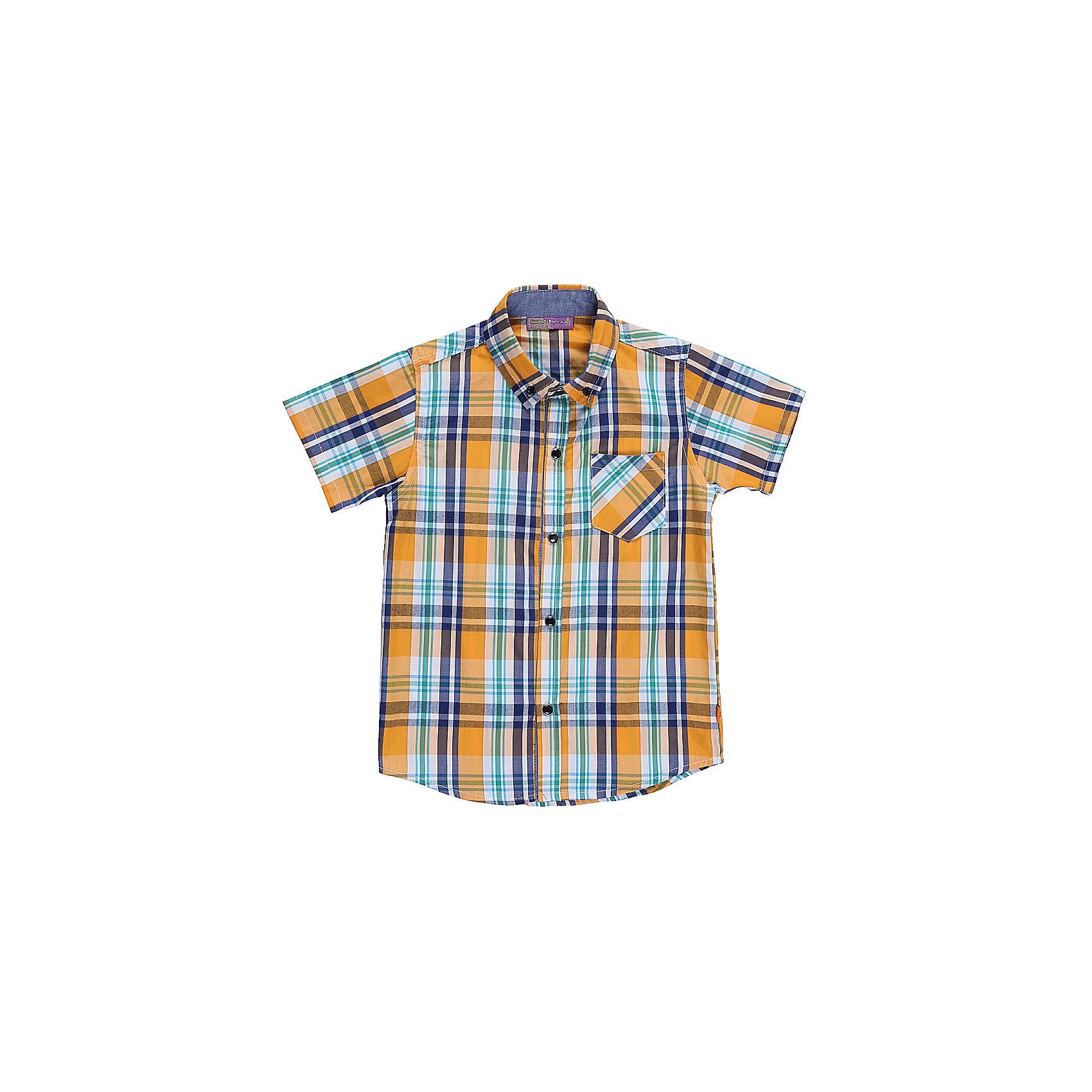 Рубашка для мальчика Sweet BerryБлузки и рубашки<br>Текстильная рубашка из хлопка в клетку для мальчика. Короткий рукав, накладной карман на левой полочке. Застегивается на кнопки. Отложной воротничок.<br>Состав:<br>100%хлопок<br><br>Ширина мм: 174<br>Глубина мм: 10<br>Высота мм: 169<br>Вес г: 157<br>Цвет: белый<br>Возраст от месяцев: 36<br>Возраст до месяцев: 48<br>Пол: Мужской<br>Возраст: Детский<br>Размер: 104,98,110,116,122,128<br>SKU: 5410414