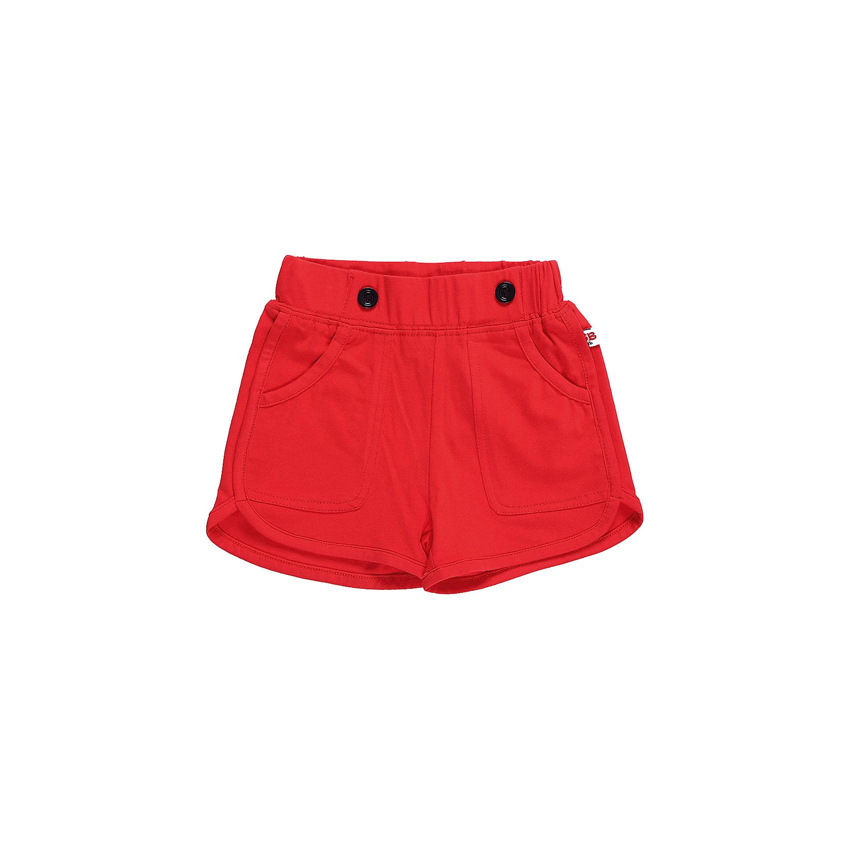 Шорты для девочки Sweet BerryШорты и бриджи<br>Трикотажные короткие шорты красного цвета для девочки.  Спереди два больших накладных  кармана. Эластичный пояс.<br>Состав:<br>95%хлопок 5%эластан<br><br>Ширина мм: 191<br>Глубина мм: 10<br>Высота мм: 175<br>Вес г: 273<br>Цвет: красный<br>Возраст от месяцев: 12<br>Возраст до месяцев: 15<br>Пол: Женский<br>Возраст: Детский<br>Размер: 80,86,92,98<br>SKU: 5411073