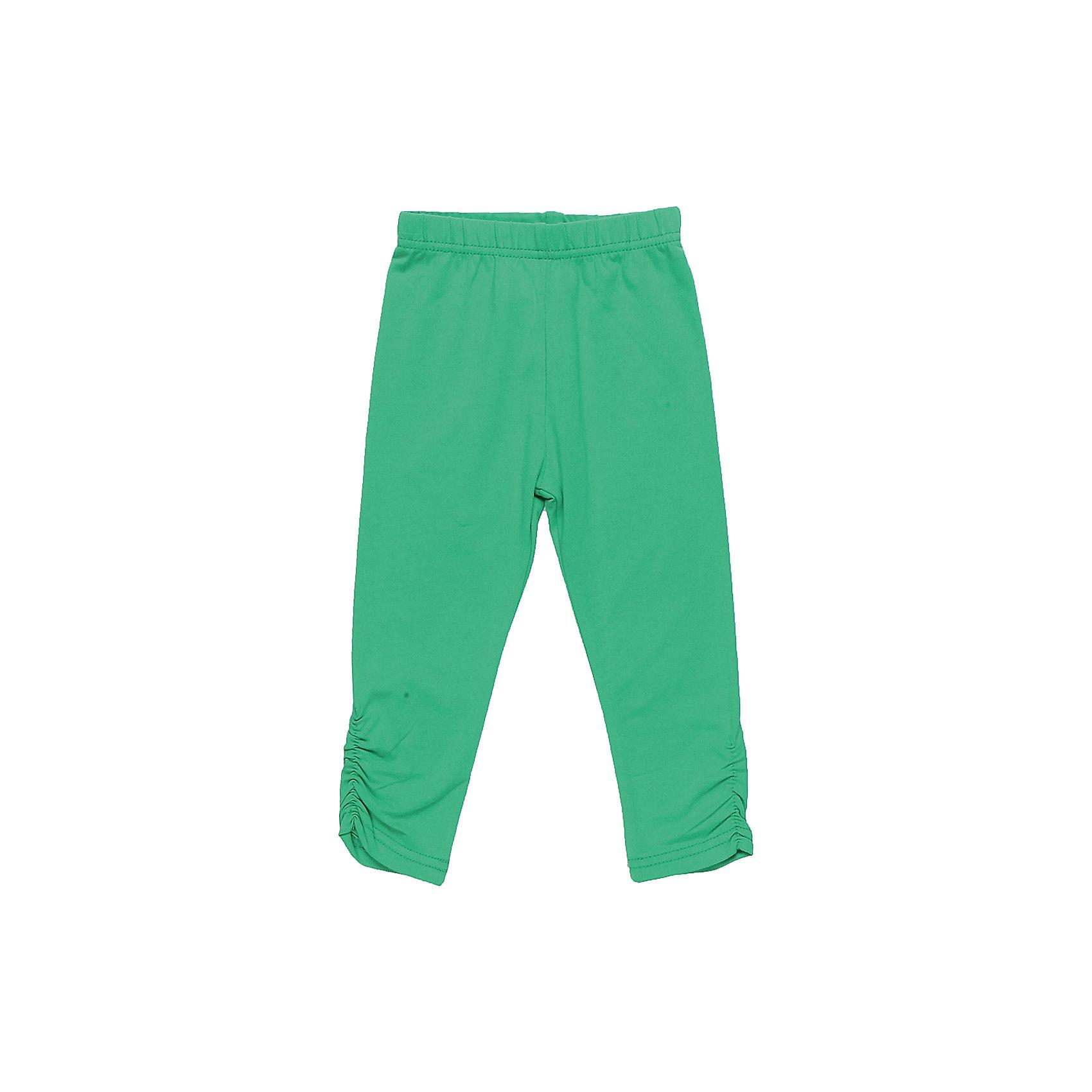Леггинсы для девочки Sweet BerryЛосины для девочки выполнены из трикотажного полотна.  Низ брючин декорирован эластичной сборкой.  Мягкий пояс на резинке.<br>Состав:<br>95%хлопок 5%эластан<br><br>Ширина мм: 123<br>Глубина мм: 10<br>Высота мм: 149<br>Вес г: 209<br>Цвет: зеленый<br>Возраст от месяцев: 24<br>Возраст до месяцев: 36<br>Пол: Женский<br>Возраст: Детский<br>Размер: 98,80,86,92<br>SKU: 5411338