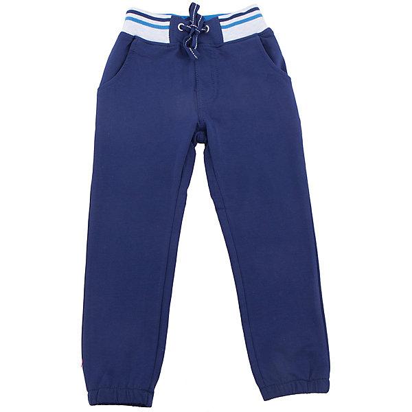 Брюки для мальчика Sweet BerryБрюки<br>Трикотажные брюки, низ брючин собран на мягкую резинку. Модель имеет прорезные карманы и декоративный кант. Пояс-резинка дополнен шнуром для регулирования объема.<br>Состав:<br>95%хлопок 5%эластан<br><br>Ширина мм: 215<br>Глубина мм: 88<br>Высота мм: 191<br>Вес г: 336<br>Цвет: синий<br>Возраст от месяцев: 24<br>Возраст до месяцев: 36<br>Пол: Мужской<br>Возраст: Детский<br>Размер: 98,104,128,122,116,110<br>SKU: 5412840