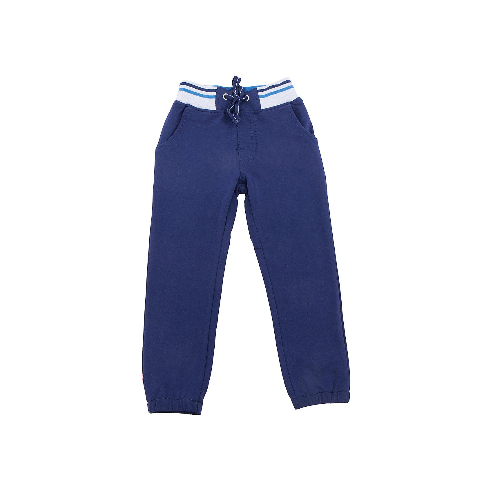 Брюки для мальчика Sweet BerryБрюки<br>Трикотажные брюки, низ брючин собран на мягкую резинку. Модель имеет прорезные карманы и декоративный кант. Пояс-резинка дополнен шнуром для регулирования объема.<br>Состав:<br>95%хлопок 5%эластан<br><br>Ширина мм: 215<br>Глубина мм: 88<br>Высота мм: 191<br>Вес г: 336<br>Цвет: синий<br>Возраст от месяцев: 36<br>Возраст до месяцев: 48<br>Пол: Мужской<br>Возраст: Детский<br>Размер: 104,98,110,116,122,128<br>SKU: 5412840