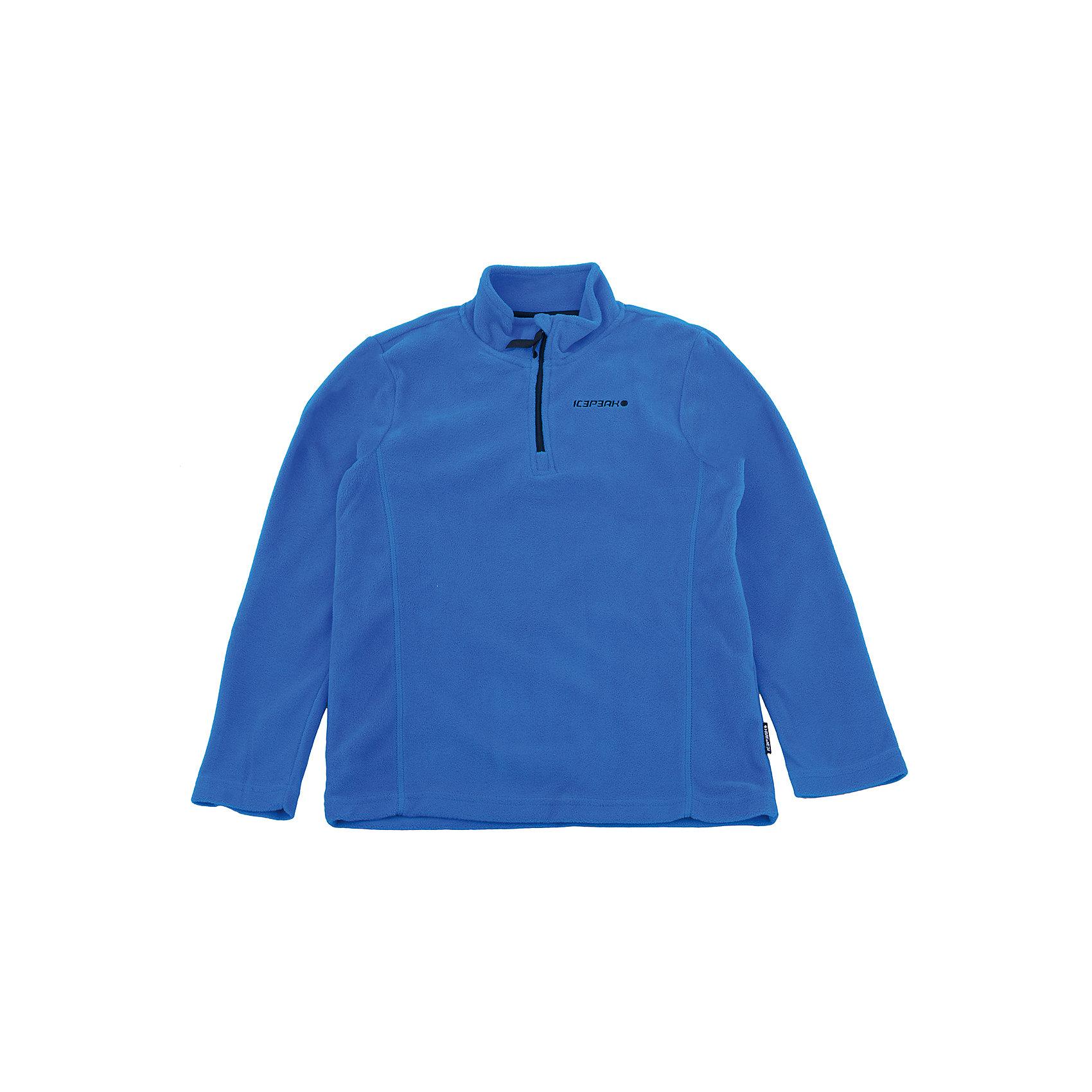 Толстовка для мальчика ICEPEAKТолстовки<br>Толстовка для мальчика от известного бренда ICEPEAK.<br>Толстовка флис с молнией , плотность 210 гр./кв.м.<br>Состав:<br>100% полиэстер<br><br>Ширина мм: 190<br>Глубина мм: 74<br>Высота мм: 229<br>Вес г: 236<br>Цвет: синий<br>Возраст от месяцев: 84<br>Возраст до месяцев: 96<br>Пол: Мужской<br>Возраст: Детский<br>Размер: 128,164,140,152<br>SKU: 5413836