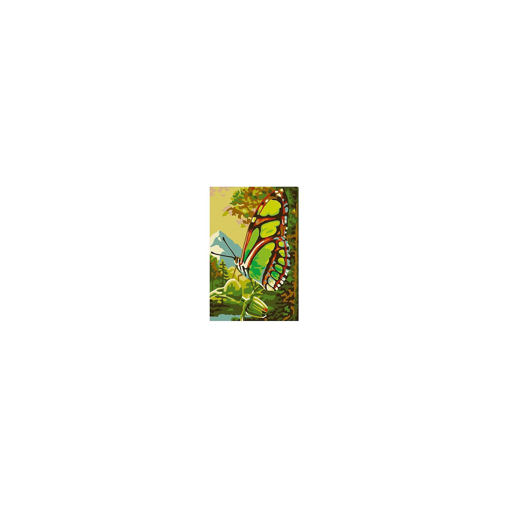 Набор юного художника Бабочка, 20*30 смРисование<br>Детские картины с раскраской по номерам размером 20*30. На деревянном подрамнике, с прогрунтованным холстом и  нанесенными контурами картины, с указанием цвета закраски, акриловыми красками, 3 кисточками и креплением на стену. Уровень сложности, количество красок указаны на коробке.<br><br>Ширина мм: 300<br>Глубина мм: 200<br>Высота мм: 30<br>Вес г: 330<br>Возраст от месяцев: 60<br>Возраст до месяцев: 108<br>Пол: Унисекс<br>Возраст: Детский<br>SKU: 5417664