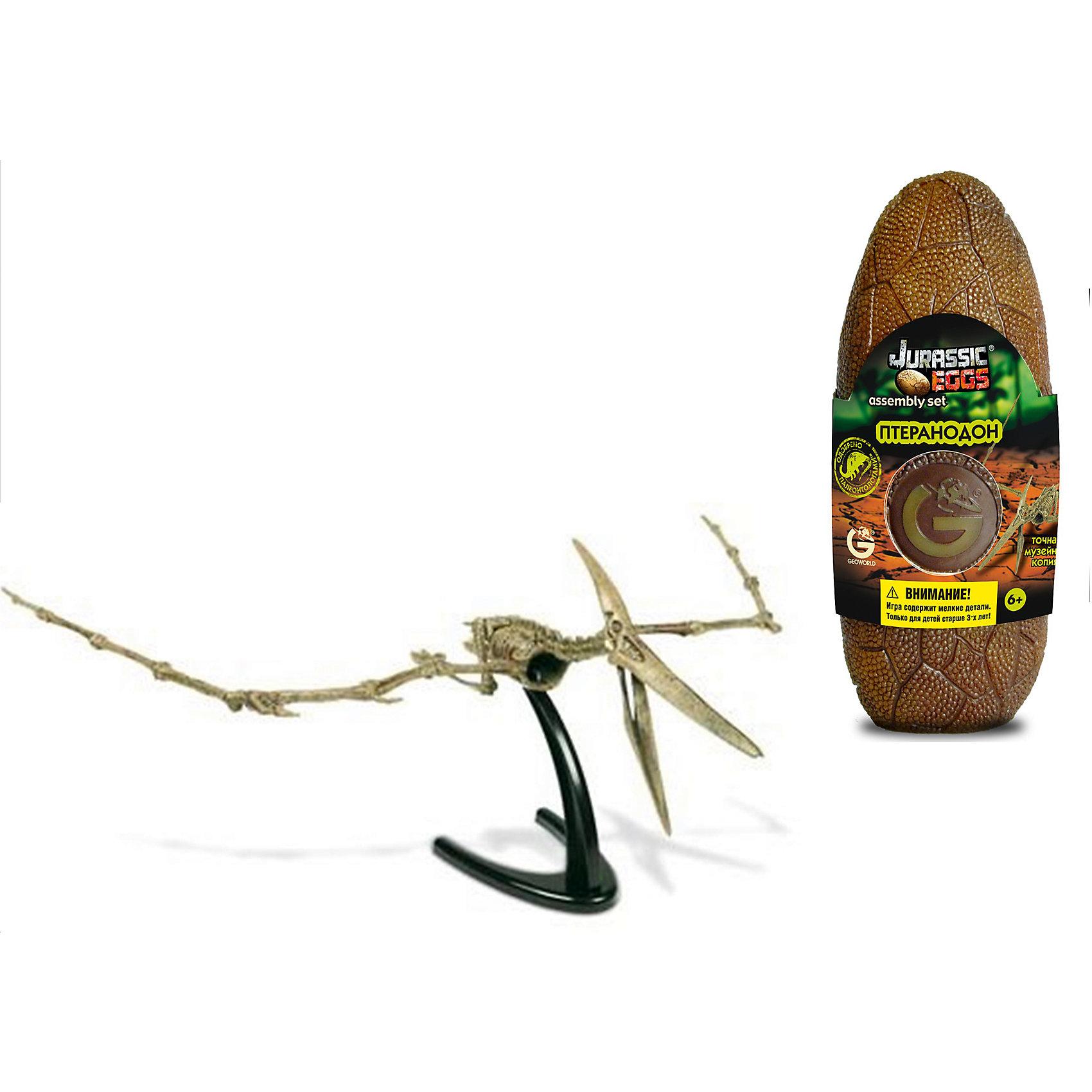 Яйцо динозавра - сборная модель Птеранодон, GeoworldДеревянные конструкторы<br>Внутри этого стилизованного яйца динозавра находится качественная сборная модель. Она иллюстрирует скелет вымершего летающего ящера — птеранодона. Модель ребенок сможет с легкостью собрать своими руками из 13 предварительно окрашенных деталей, которые похожи на части настоящего скелета. Модель настолько качественная, что приравнивается к музейному экспонату. В собранном виде эта необычная модель скелета птеранодона станет оригинальным сувениром. У модели имеется подставка, которая позволяет собрать скелет в летящей позе с распахнутыми крыльями. Длина собранной модели: 48 см.  детали, яйцо, брошюра.<br><br>Ширина мм: 80<br>Глубина мм: 70<br>Высота мм: 200<br>Вес г: 190<br>Возраст от месяцев: 36<br>Возраст до месяцев: 96<br>Пол: Унисекс<br>Возраст: Детский<br>SKU: 5418979