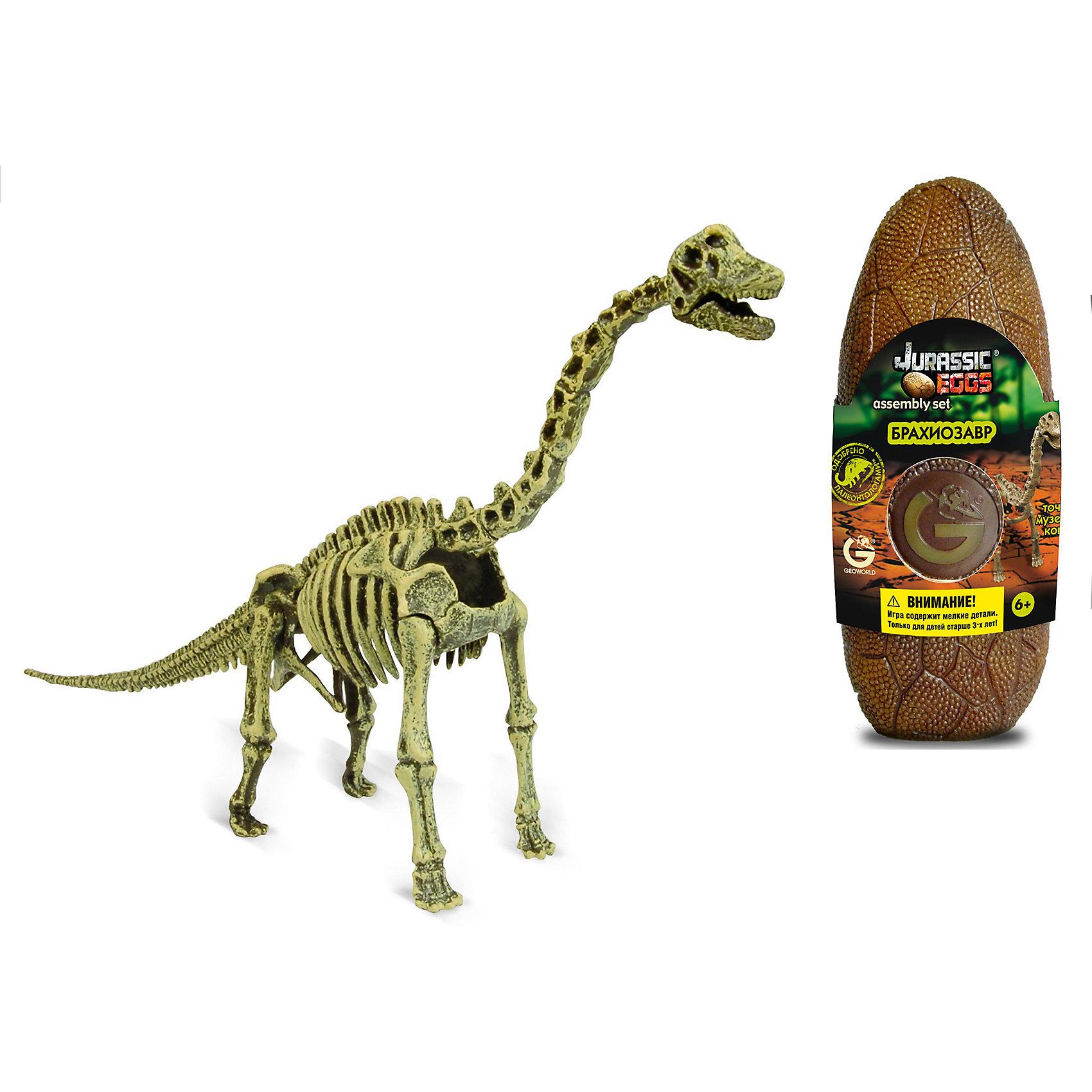 Яйцо динозавра - сборная модель Брахиозавр, GeoworldСборная модель брахиозавра — это возможность для юного палеонтолога своими руками собрать из специальных деталей экспонат музейного качества. В итальянской компании Geoworld лично ее владелец — доктор палеонтологических наук - следит за качеством каждой выпускаемой копии динозавра. Поэтому этот набор представляет не только развивающий, но и познавательный интерес. Все детали для сборки спрятаны внутрь яйца, которое имитирует яйцо древнего ящера. Брахиозавр — очень интересный вид, у него крайне длинная шея и маленькая голова. Он обитал в конце юрского периода, считается одним из самых высоких динозавров. Длина собранной модели: 28 см.  детали, яйцо, брошюра.<br><br>Ширина мм: 80<br>Глубина мм: 70<br>Высота мм: 200<br>Вес г: 190<br>Возраст от месяцев: 36<br>Возраст до месяцев: 96<br>Пол: Унисекс<br>Возраст: Детский<br>SKU: 5418980