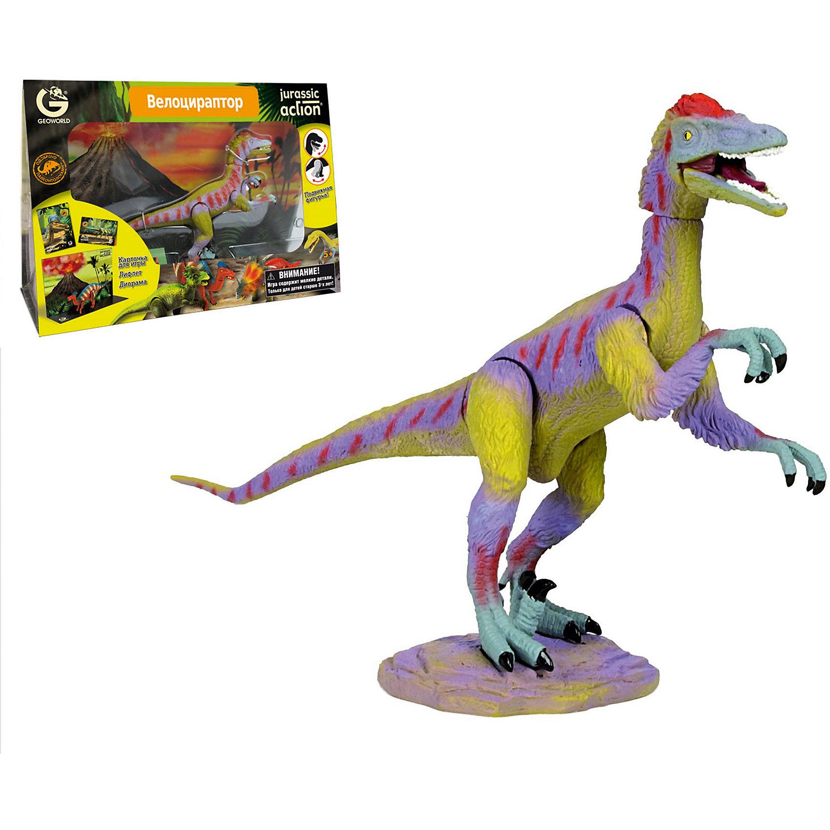 Динозавр Велоцираптор, коллекция Jurassic Action, GeoworldДраконы и динозавры<br>Характеристики товара:<br><br>• материал: пластик, картон<br>• фигурка подвижная<br>• возраст: от 4 лет<br>• габариты упаковки: 23х11х33 см<br>• комплектация: фигурка динозавра, карточка, буклет, диорама<br>• вес: 400 г<br>• страна бренда: Италия<br><br>Детализированная фигурка отлично впишется в коллекцию динозавров юного палеонтолога. Уникальный дизайн, проработанные мелкие детали и художественное исполнение сделали игрушку очень реалистичной и перенесли ее в раздел коллекционных моделей. Материалы, использованные при изготовлении товаров, проходят проверку на качество и соответствие международным требованиям по безопасности.<br><br>У фигурки подвижны конечности и голова, поэтому ей можно придавать разные позы. Также в наборе идет карточка, описывающая этого динозавра, и буклет. Плюс - диорама со средой обитания динозавра. Такие фигурки помогают привить детям любовь к учебе, развить воображение и интерес к коллекционированию.<br><br>Динозавр Велоцираптор, коллекция Jurassic Action, от бренда Geoworld можно купить в нашем интернет-магазине.<br><br>Ширина мм: 230<br>Глубина мм: 110<br>Высота мм: 330<br>Вес г: 422<br>Возраст от месяцев: 60<br>Возраст до месяцев: 108<br>Пол: Унисекс<br>Возраст: Детский<br>SKU: 5419000