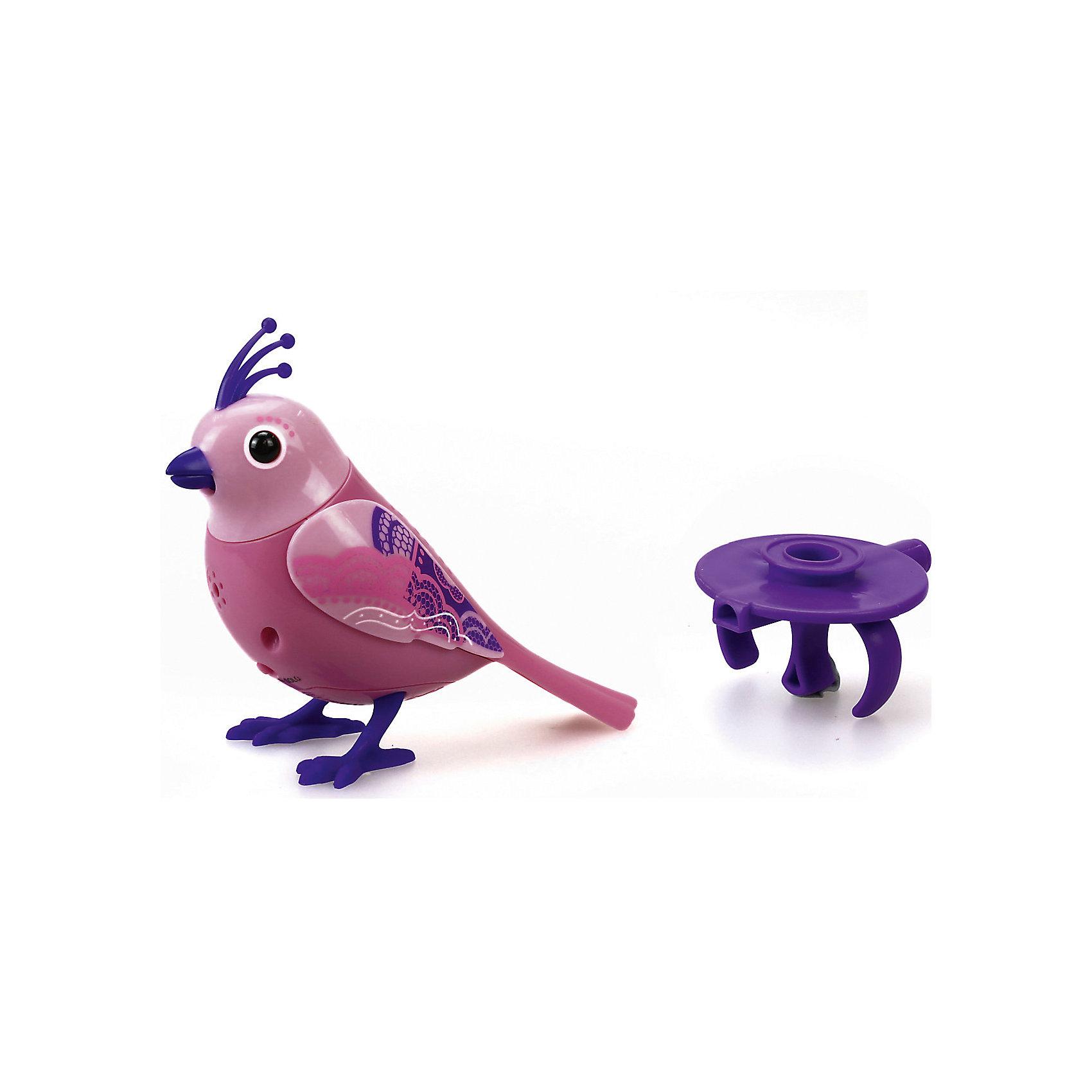 Поющая птичка с кольцом, фиолетово-розовая, DigiBirds<br><br>Ширина мм: 64<br>Глубина мм: 152<br>Высота мм: 102<br>Вес г: 91<br>Возраст от месяцев: 36<br>Возраст до месяцев: 84<br>Пол: Женский<br>Возраст: Детский<br>SKU: 5419999