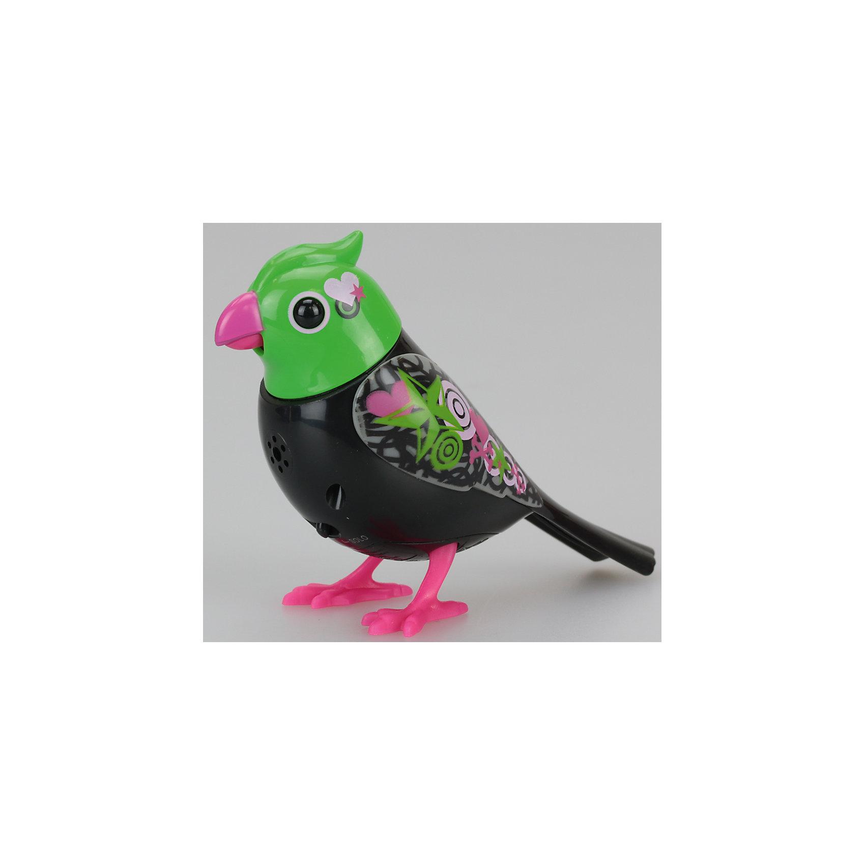 Поющая птичка с кольцом, красно-зеленая, DigiBirdsЗаводные игрушки<br>Поющая птичка с кольцом, красно-зеленая, DigiBirds<br><br>Характеристики:<br><br>• Возраст: от 3 лет<br>• Цвет: красно-зеленая<br>• В комплекте: 1 птичка, 1 свисток<br>• Батарейки: 3 (мини)<br>• Материал: пластик<br>• Размер игрушки: 6,5 см<br><br>В программу этой поющей птички заложено более пятидесяти различных звуков и мелодий! Она может петь и шевелиться, а так же стоять на любой поверхности, а не только на своей жердочке, что делает ее мобильной и позволяет ребенку носить ее с собой. <br><br>При приобретении нескольких игрушек данной серии она может даже петь с ними в хоре. Для активации игрушки необходимо подуть в свисток, который идет в комплекте. При пении у птички светятся глаза, она может открывать клюв и шевелить головой.<br><br>Поющая птичка с кольцом, красно-зеленая, DigiBirds можно купить в нашем интернет-магазине.<br><br>Ширина мм: 64<br>Глубина мм: 152<br>Высота мм: 102<br>Вес г: 91<br>Возраст от месяцев: 36<br>Возраст до месяцев: 84<br>Пол: Женский<br>Возраст: Детский<br>SKU: 5420000
