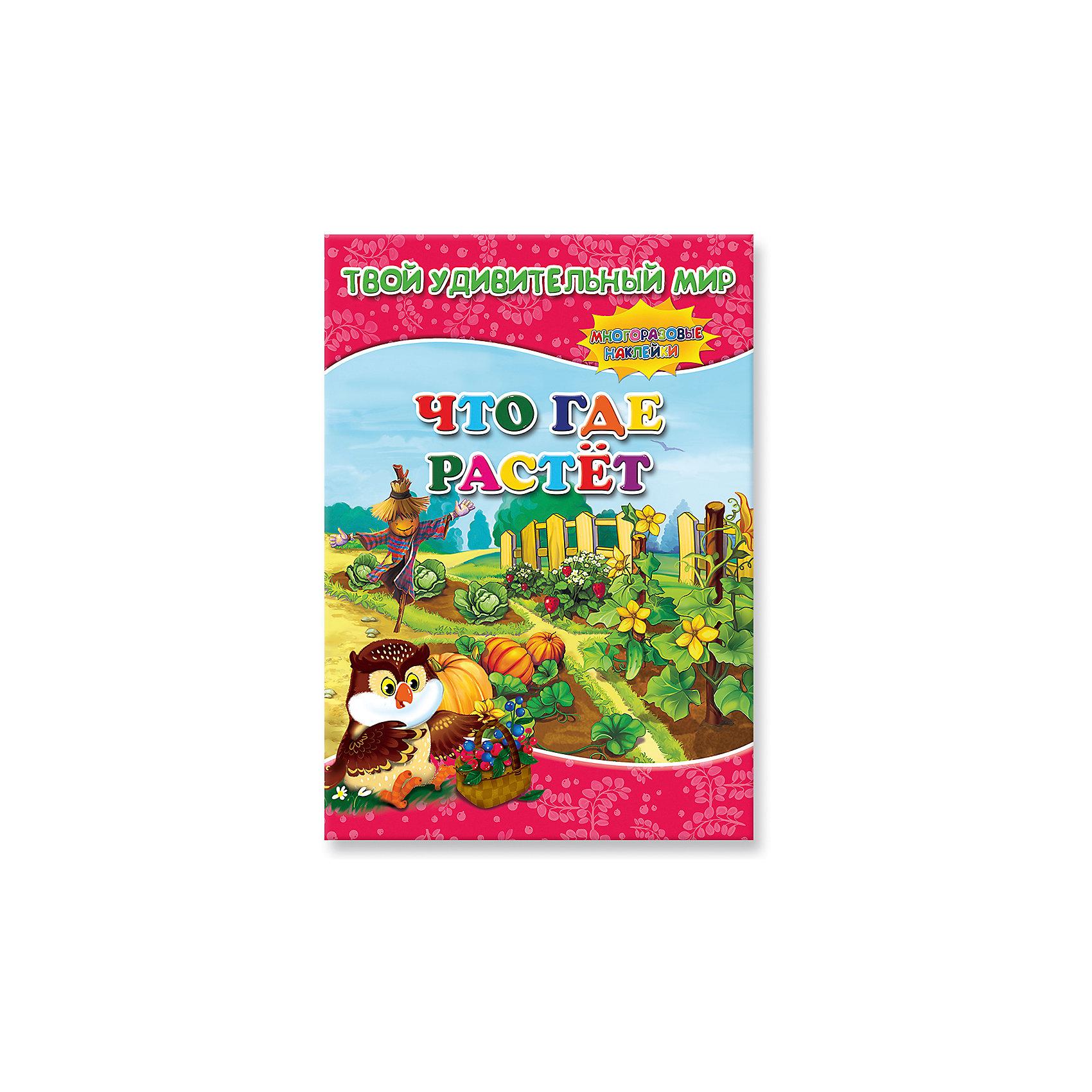 Книжка с наклейками Что где растет, Твой удивительный мирВ продолжение серии «Твой удивительный мир» для детей от 3 лет вышла новая яркая книжка с наклейками. Ваш ребенок, играя, узнает, где растут ягоды и грибы, фрукты и экзотические растения. Подсказки внизу страницы помогут вашему малышу выбрать нужные картинки и наклеить на любое понравившееся место. Мягкий переплет.<br><br>Ширина мм: 215<br>Глубина мм: 297<br>Высота мм: 3<br>Вес г: 110<br>Возраст от месяцев: 36<br>Возраст до месяцев: 84<br>Пол: Унисекс<br>Возраст: Детский<br>SKU: 5423042