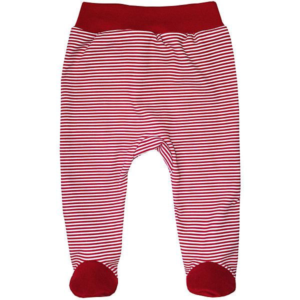 Ползунки для девочки KotMarKotПолзунки и штанишки<br>Характеристики товара:<br><br>• цвет: красный<br>• состав ткани: 100% хлопок<br>• сезон: круглый год<br>• пояс: резинка<br>• страна бренда: Россия<br>• комфорт и качество<br><br>Качественная детская одежда поможет создать ребенку комфорт на весь день. Ползунки для ребенка отличаются мягкой резинкой в талии. Качественные швы делают эти детские ползунки очень удобными.<br><br>Ползунки KotMarKot (КотМарКот) для девочки можно купить в нашем интернет-магазине.<br>Ширина мм: 157; Глубина мм: 13; Высота мм: 119; Вес г: 200; Цвет: красный; Возраст от месяцев: 0; Возраст до месяцев: 3; Пол: Женский; Возраст: Детский; Размер: 56,86,62,68,74,80; SKU: 5423875;