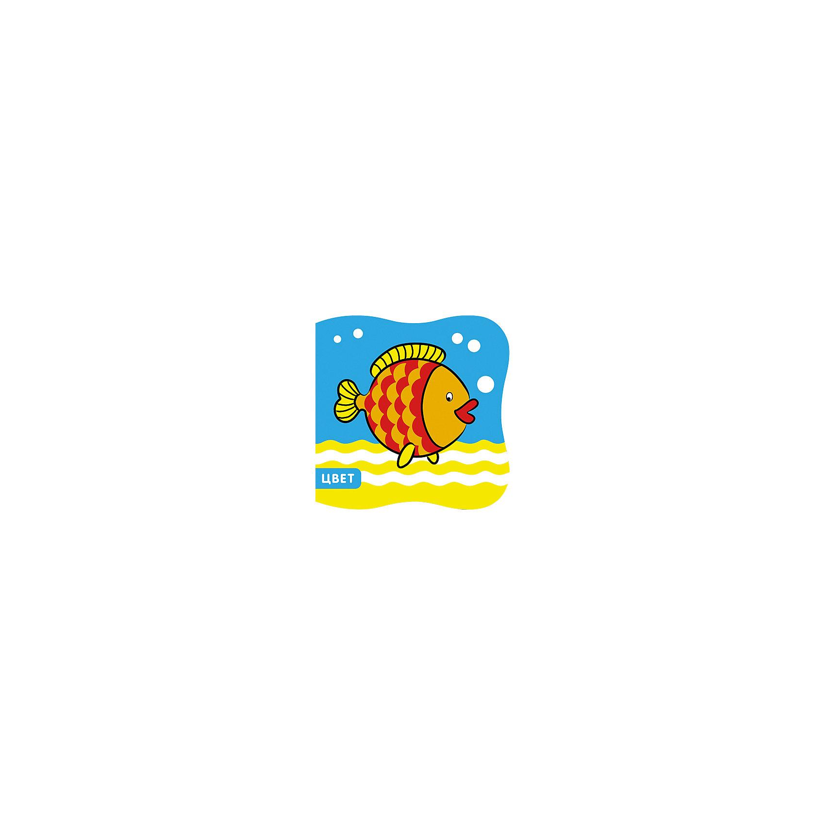 Книжка Рыбка, серия  Купашки, Мозаика-СинтезИгрушки для ванной<br>Книжка Рыбка, серия  Купашки, Мозаика-Синтез.<br><br>Характеристики:<br><br>• Издательство: МОЗАИКА-СИНТЕЗ<br>• ISBN: 9785431505942<br>• Тип: книга из мягкого моющегося материала.<br>• Серия: речь, грамота, чтение.<br>• Возраст: от 0 лет.<br>• Размер книги: 127х125х20 мм.<br>• Количество страниц: 6<br><br>С книжкой «Рыбка» серии «Купашки» так приятно играть в воде! С ней купание станет не только полезной, но и веселой процедурой. Книжка не боится воды, она очень мягкая и приятная на ощупь, а еще издает забавный писк. Крупные, яркие картинки познакомят вашего малыша с основными цветами.<br><br>Книжку Рыбка, серия  Купашки, Мозаика-Синтез, можно купить в нашем интернет – магазине.<br><br>Ширина мм: 20<br>Глубина мм: 127<br>Высота мм: 125<br>Вес г: 37<br>Возраст от месяцев: 0<br>Возраст до месяцев: 36<br>Пол: Унисекс<br>Возраст: Детский<br>SKU: 5428902