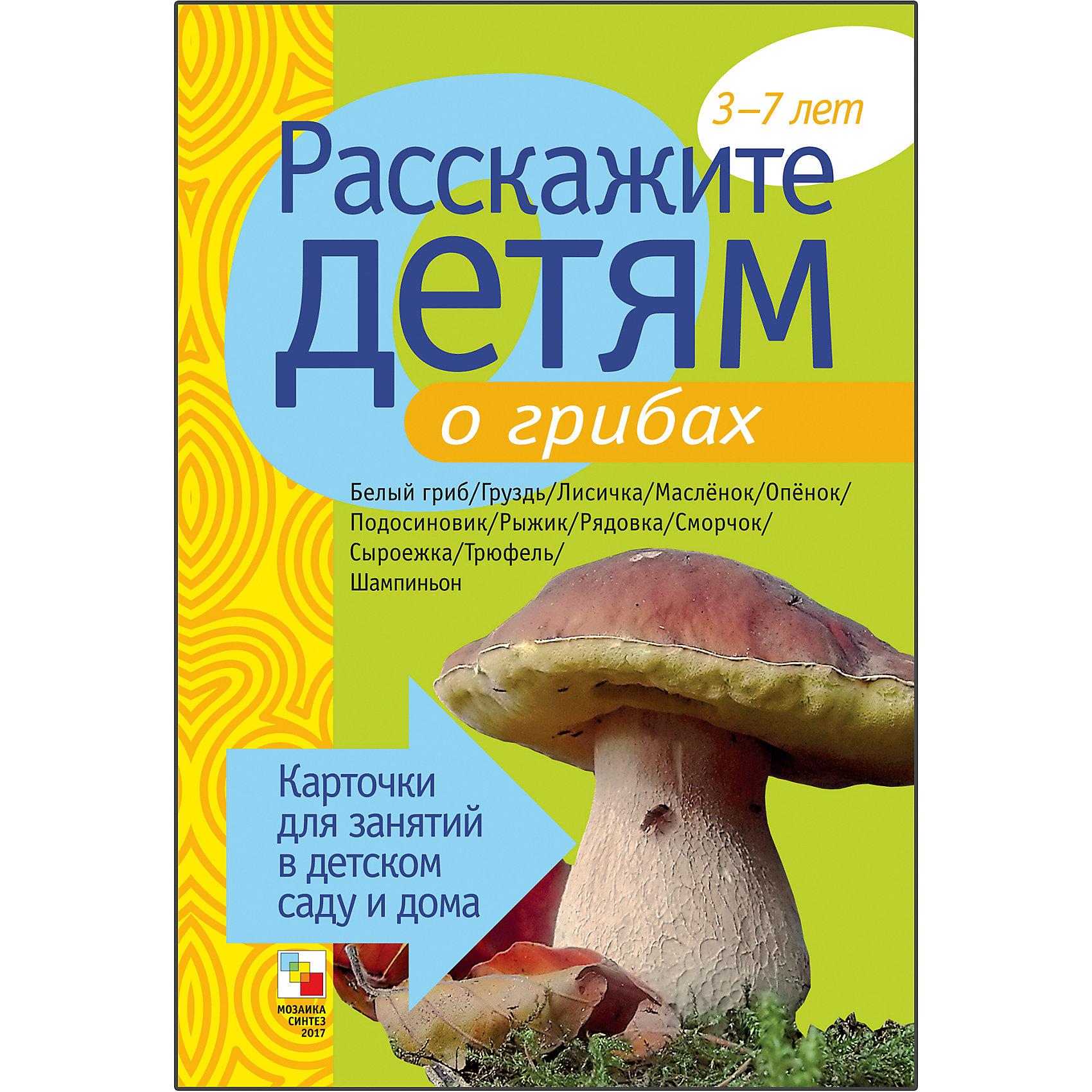 Карточки Расскажите детям о грибах, Мозаика-СинтезРазвивающие игры<br>Пособие Расскажите детям о грибах, Мозаика-Синтез<br><br>Характеристики:<br><br>• Издательство: МОЗАИКА-СИНТЕЗ<br>• ISBN: 9785867758103<br>• Тип: папка с карточками, обложка твердая.<br>• Возраст: от 3-7 лет.<br>• Размер книги: 210х150х5 мм.<br>• Количество страниц: 24<br><br>Пособие с яркими четкими картинками поможет Вам рассказать малышам о грибах. Они узнают много нового и интересного о белых, сыроежках, лисичках, груздях, трюфелях и о многих других. На оборотной стороне карточек содержатся необходимые сведения, стихи, поговорки и загадки о них. Эта информация поможет сделать ваш рассказ увлекательным и познавательным для каждого малыша.<br><br>Пособие Расскажите детям о грибах, Мозаика-Синтез, можно купить в нашем интернет – магазине.<br><br>Ширина мм: 5<br>Глубина мм: 150<br>Высота мм: 210<br>Вес г: 114<br>Возраст от месяцев: 36<br>Возраст до месяцев: 84<br>Пол: Унисекс<br>Возраст: Детский<br>SKU: 5428909