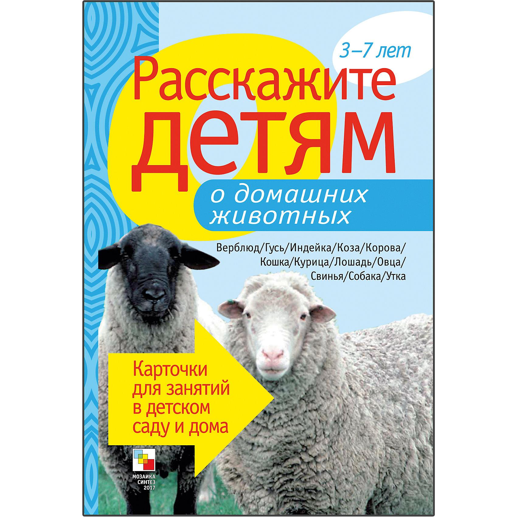 Карточки  Расскажите детям о домашних животных, Мозаика-СинтезОбучающие карточки<br>Пособие Расскажите детям о домашних животных, Мозаика-Синтез.<br><br>Характеристики:<br><br>• Издательство: МОЗАИКА-СИНТЕЗ<br>• ISBN: 9785867758110<br>• Тип: папка с карточками, обложка твердая.<br>• Возраст: от 3-7 лет.<br>• Размер книги: 210х150х5 мм.<br>• Количество страниц: 12<br><br>Пособие с яркими четкими картинками поможет Вам рассказать малышам о домашних животных. Они узнают много нового и интересного о кошках, лошадях, верблюдах, утках, собаках и о многих других. <br><br>На оборотной стороне карточек содержатся необходимые сведения, стихи, поговорки и загадки о них. Эта информация поможет сделать ваш рассказ увлекательным и познавательным для каждого малыша.<br><br>Пособие Расскажите детям о домашних животных, Мозаика-Синтез, можно купить в нашем интернет – магазине.<br><br>Ширина мм: 5<br>Глубина мм: 150<br>Высота мм: 210<br>Вес г: 114<br>Возраст от месяцев: 36<br>Возраст до месяцев: 84<br>Пол: Унисекс<br>Возраст: Детский<br>SKU: 5428911