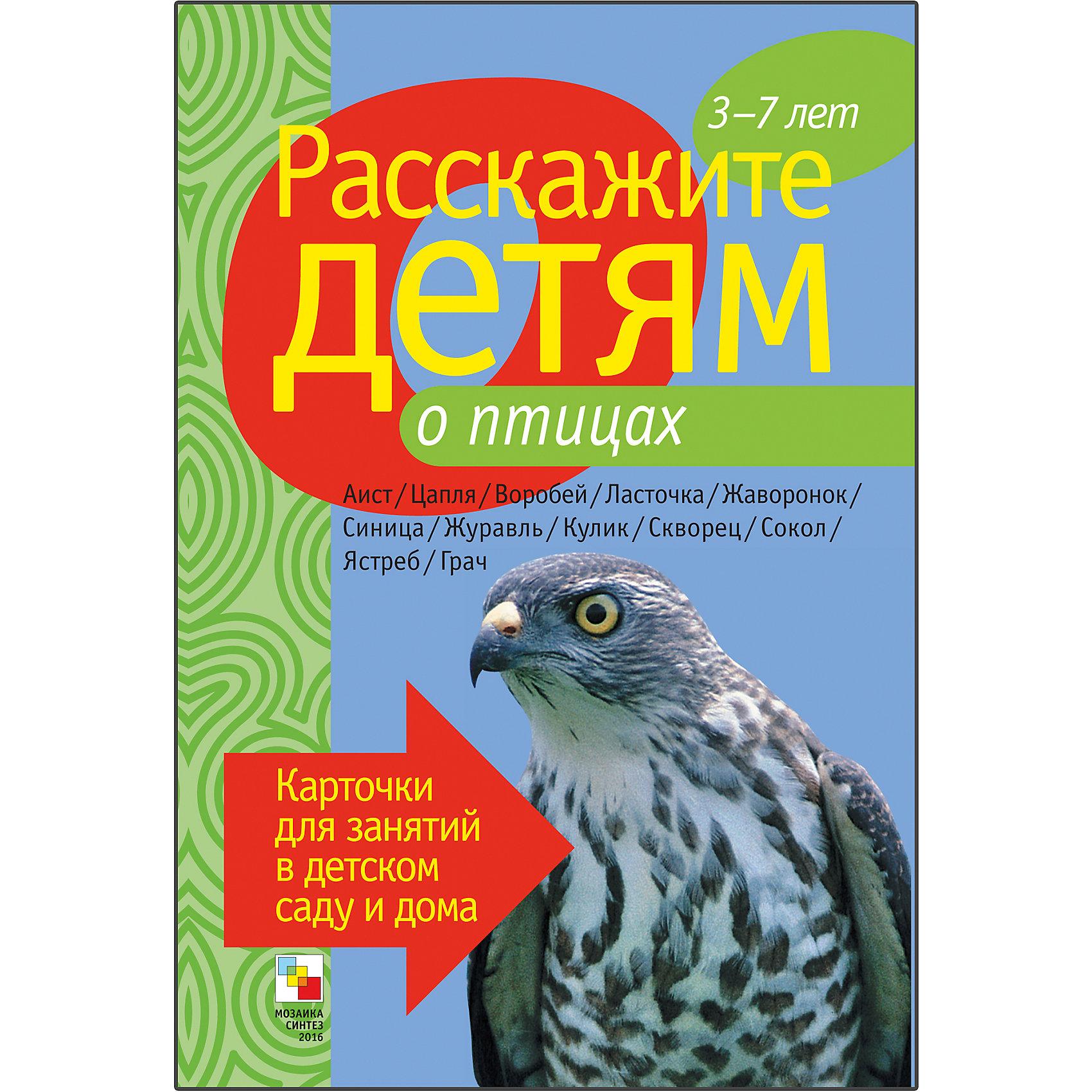 Карточки Расскажите детям о птицах, Мозаика-СинтезОбучающие карточки<br>Пособие Расскажите детям о птицах, Мозаика-Синтез.<br><br>Характеристики:<br><br>• Издательство: МОЗАИКА-СИНТЕЗ<br>• ISBN: 9785867754693<br>• Тип: папка с карточками, обложка твердая.<br>• Возраст: от 3-7 лет.<br>• Размер книги: 210х150х5 мм.<br>• Количество страниц: 12<br><br>Мир пернатых обитателей нашей страны поистине огромен. Данное пособие даст ребенку обширный материал о птицах, обитающих в России. Это и хищные пернатые, такие как ястреб или сокол, и мирные пичужки, питающиеся насекомыми, – синички, воробьи или скворцы. Есть среди птиц и обитатели водоемов и болот – цапли, кулики, аисты. Помещенные в тексте стихи, пословицы и загадки о птицах помогут дополнить рассказ о той или иной птице.<br><br>Пособие Расскажите детям о птицах, Мозаика-Синтез, можно купить в нашем интернет – магазине.<br><br>Ширина мм: 5<br>Глубина мм: 150<br>Высота мм: 210<br>Вес г: 83<br>Возраст от месяцев: 36<br>Возраст до месяцев: 84<br>Пол: Унисекс<br>Возраст: Детский<br>SKU: 5428923