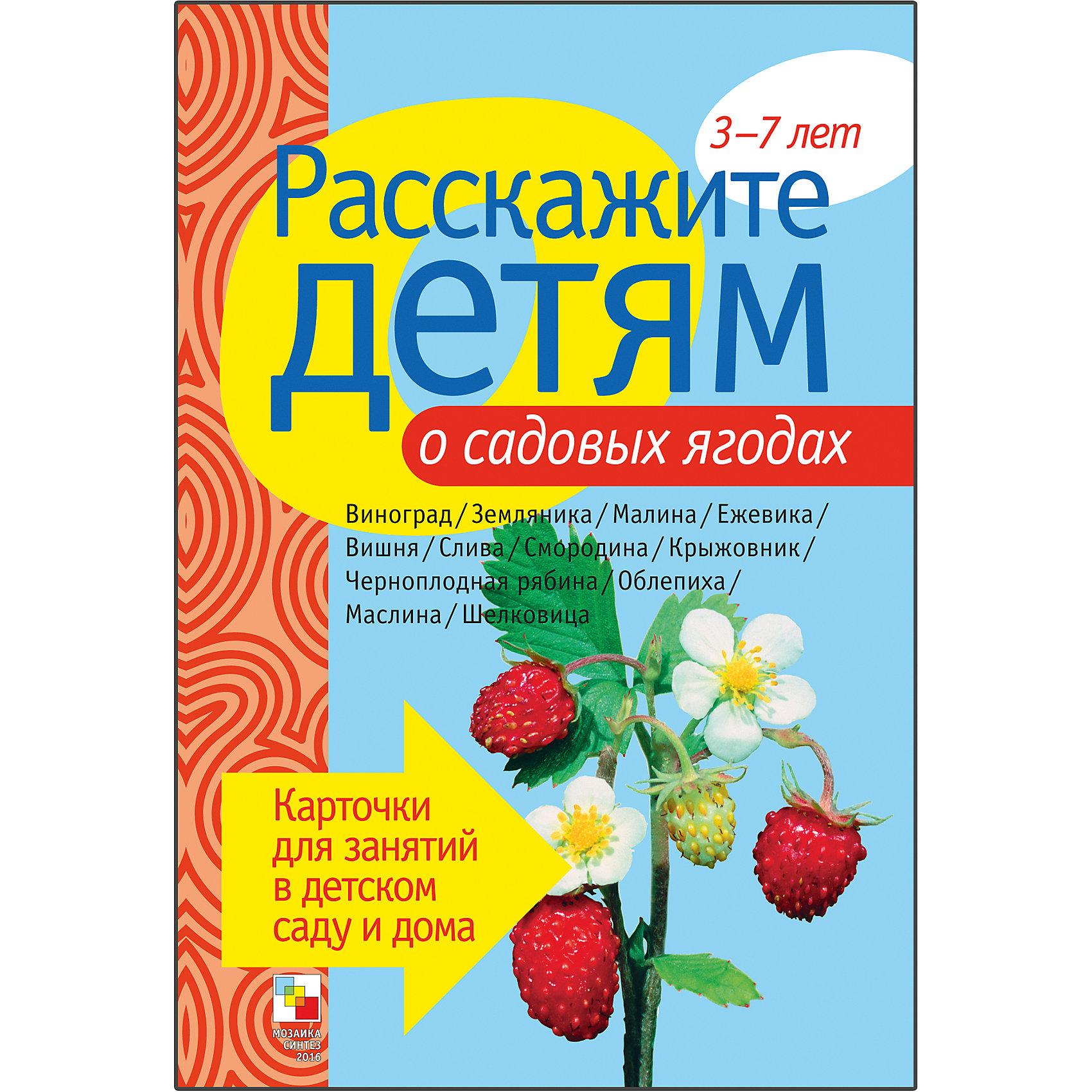 Пособие Расскажите детям о садовых ягодах, Мозаика-СинтезРазвивающие игры<br>Пособие Расскажите детям о садовых ягодах, Мозаика-Синтез.<br><br>Характеристики:<br><br>• Издательство: МОЗАИКА-СИНТЕЗ<br>• ISBN: 9785867754709<br>• Тип: папка с карточками, обложка твердая.<br>• Возраст: от 3-7 лет.<br>• Размер книги: 210х150х5 мм.<br>• Количество страниц: 12<br><br>В данном пособии собраны картинки с изображениями садовых ягод. Любознательный малыш узнает, как с древних времен люди «одомашнивали» ягоды, выводя из диких ягод садовые сорта. <br><br>На оборотной стороне каждой картинки Вы найдете необходимые сведения по каждой теме, веселые стихи и загадки.<br><br>Пособие Расскажите детям о садовых ягодах, Мозаика-Синтез, можно купить в нашем интернет – магазине.<br><br>Ширина мм: 5<br>Глубина мм: 150<br>Высота мм: 210<br>Вес г: 83<br>Возраст от месяцев: 36<br>Возраст до месяцев: 84<br>Пол: Унисекс<br>Возраст: Детский<br>SKU: 5428925