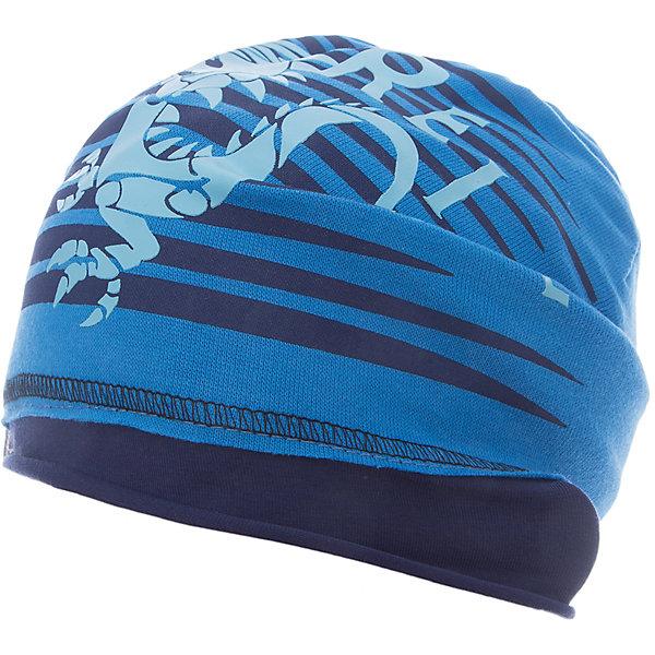 Шапка Reike для мальчикаШапки и шарфы<br>Характеристики товара:<br><br>• цвет: синий<br>• состав: 97% хлопок, 3% полиуретан<br>• декорирована принтом <br>• мягкий материал<br>• страна бренда: Финляндия<br>• страна изготовитель: Китай<br><br>Новая коллекция от известного финского производителя Reike отличается ярким дизайном, продуманностью и комфортом! Эта модель разработана специально для детей - она учитывает особенности их физиологии, а также новые тенденции в европейской моде. Она отлично сочетается с обувью разных цветов и фасонов. Стильная и удобная вещь!<br><br>Шапку для мальчика от популярного бренда Reike можно купить в нашем интернет-магазине.<br><br>Ширина мм: 89<br>Глубина мм: 117<br>Высота мм: 44<br>Вес г: 155<br>Цвет: синий<br>Возраст от месяцев: 24<br>Возраст до месяцев: 36<br>Пол: Мужской<br>Возраст: Детский<br>Размер: 50,54,52<br>SKU: 5430172