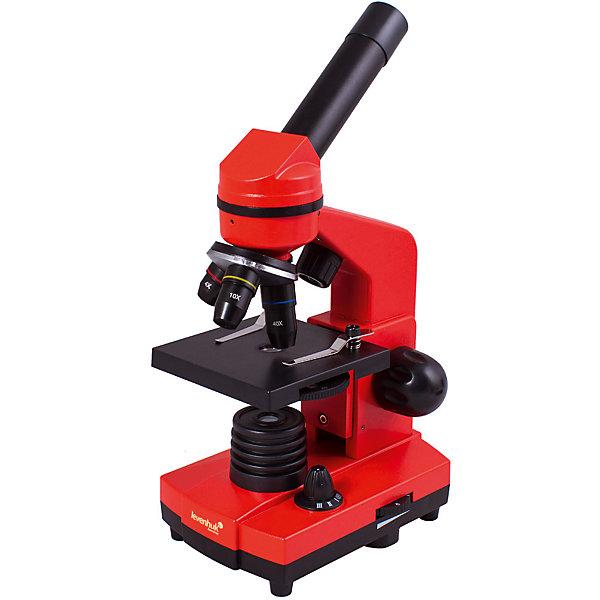 Микроскоп Levenhuk Rainbow 2L Orange\АпельсинМикроскопы<br>Характеристики товара:<br><br>• материал: металл, пластик<br>• увеличение: до 400 крат<br>• объективы: 4х, 10х, 40х<br>• подсветка: светодиодная<br>• подсветка работает от батареек 3хАА<br>• комплектация: микроскоп, окуляр WF16х, предметный столик с зажимами, диск с диафрагмами, адаптер питания от сети (питание 110-220 В, 50 Гц), инструкция по эксплуатации и гарантийный талон, пинцет, инкубатор для артемии, микротом, флакон с дрожжами, флакон со смолой для изготовления препаратов, флакон с морской солью, флакон с артемией (морским рачком), 5 готовых образцов и 5 чистых предметных стекол, пипетка<br>• диаметр окулярной трубки: 23,2 мм<br>• страна бренда: США<br>• страна производства: КНР<br><br>Собственный микроскоп - это отличный способ заинтересовать ребенка наукой и привить ему интерес к учебе. Эта модель микроскопа была разработана специально для детей - он позволяет увеличивать препарат в 400 крат, с помощью этого дети могут исследовать состав и структуру разнообразных предметов, веществ и организмов. Благодаря стильному дизайну этот микроскоп отлично вписывается в интерьер!<br><br>Оптические приборы от американской компании Levenhuk уже успели зарекомендовать себя как качественная и надежная продукция. Для их производства используются только безопасные и проверенные материалы. Такой прибор способен прослужить долго. Подарите ребенку интересную и полезную вещь!<br><br>Микроскоп Levenhuk Rainbow 2L Orange\Апельсин от известного бренда Levenhuk (Левенгук) можно купить в нашем интернет-магазине.<br><br>Ширина мм: 230<br>Глубина мм: 150<br>Высота мм: 370<br>Вес г: 1530<br>Возраст от месяцев: 60<br>Возраст до месяцев: 2147483647<br>Пол: Унисекс<br>Возраст: Детский<br>SKU: 5435268
