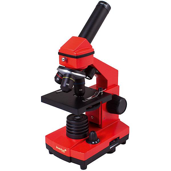 Микроскоп Levenhuk Rainbow 2L PLUS Orange\АпельсинМикроскопы<br>Характеристики товара:<br><br>• материал: металл, пластик<br>• увеличение: до 640 крат<br>• набор для опытов в комплекте<br>• прочный металлический корпус<br>• подсветка: светодиод<br>• лампа работает от батареек 3хАА<br>• комплектация: микроскоп, объективы: 4х, 10х и 40хs, окуляр: WF16x, Предметный столик с зажимами, диск с диафрагмами, конденсор, встроенные нижний и верхний осветители на светодиодах, сетевой адаптер (питание 220 В, 50 Гц), инструкция по эксплуатации и гарантийный талон, пинцет, инкубатор для артемии, микротом, флакон с дрожжами, флакон со смолой для изготовления препаратов, флакон с морской солью, флакон с артемией (морским рачком), 5 готовых образцов и 5 чистых предметных стекол, пипетка, пылезащитный чехол<br>• страна бренда: США<br>• страна производства: КНР<br><br>Собственный микроскоп - это отличный способ заинтересовать ребенка наукой и привить ему интерес к учебе. Эта модель микроскопа была разработана специально для детей - он позволяет увеличивать препарат в 640 крат, с помощью этого дети могут исследовать состав и структуру разнообразных предметов, веществ и организмов. Благодаря стильному дизайну этот микроскоп отлично вписывается в интерьер!<br><br>Оптические приборы от американской компании Levenhuk уже успели зарекомендовать себя как качественная и надежная продукция. Для их производства используются только безопасные и проверенные материалы. Такой прибор способен прослужить долго. Подарите ребенку интересную и полезную вещь!<br><br>Микроскоп Levenhuk Rainbow 2L PLUS Orange\Апельсин от известного бренда Levenhuk (Левенгук) можно купить в нашем интернет-магазине.<br>Ширина мм: 230; Глубина мм: 150; Высота мм: 370; Вес г: 1840; Возраст от месяцев: 60; Возраст до месяцев: 2147483647; Пол: Унисекс; Возраст: Детский; SKU: 5435278;