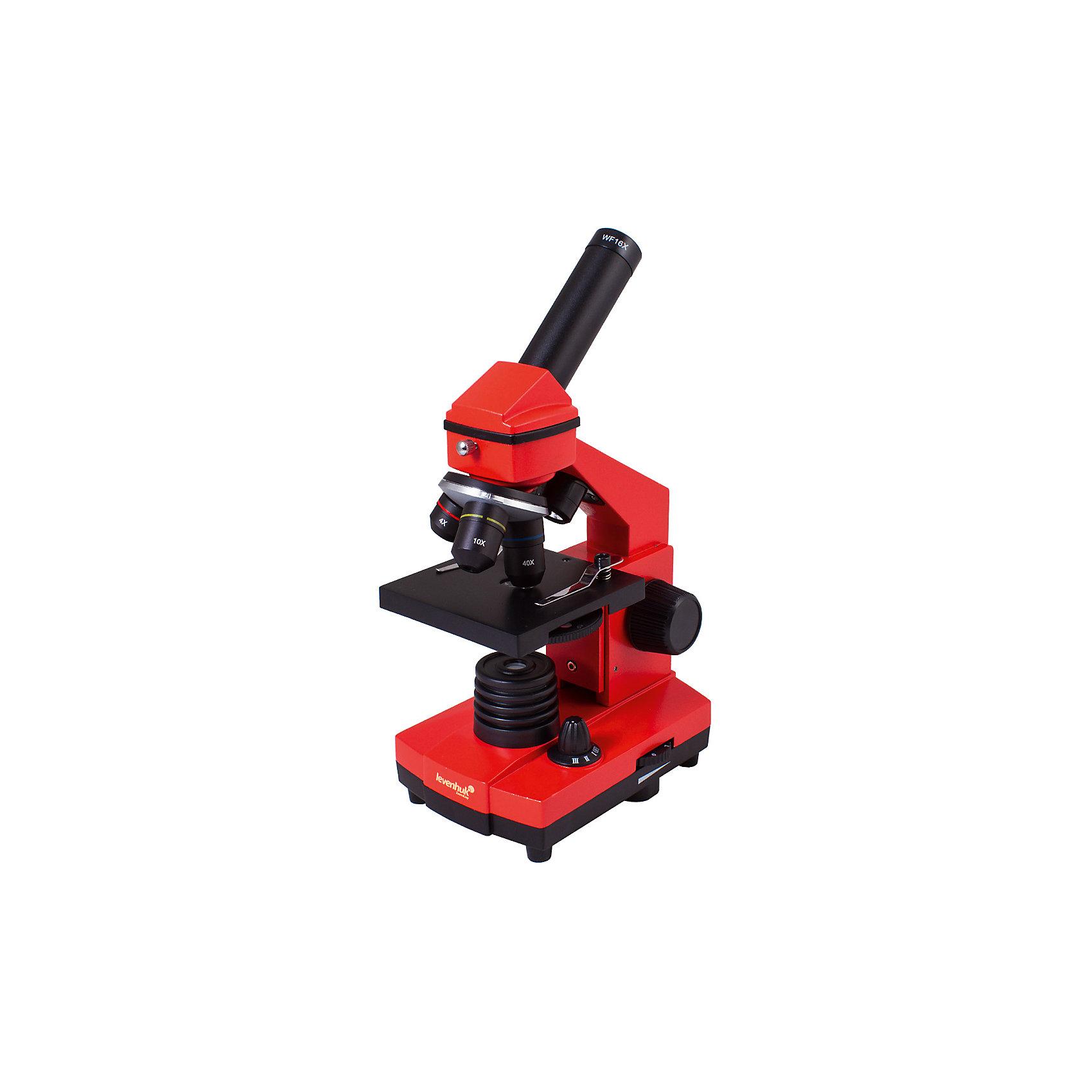 Микроскоп Levenhuk Rainbow 2L PLUS Orange\АпельсинМикроскопы<br>Характеристики товара:<br><br>• материал: металл, пластик<br>• увеличение: до 640 крат<br>• набор для опытов в комплекте<br>• прочный металлический корпус<br>• подсветка: светодиод<br>• лампа работает от батареек 3хАА<br>• комплектация: микроскоп, объективы: 4х, 10х и 40хs, окуляр: WF16x, Предметный столик с зажимами, диск с диафрагмами, конденсор, встроенные нижний и верхний осветители на светодиодах, сетевой адаптер (питание 220 В, 50 Гц), инструкция по эксплуатации и гарантийный талон, пинцет, инкубатор для артемии, микротом, флакон с дрожжами, флакон со смолой для изготовления препаратов, флакон с морской солью, флакон с артемией (морским рачком), 5 готовых образцов и 5 чистых предметных стекол, пипетка, пылезащитный чехол<br>• страна бренда: США<br>• страна производства: КНР<br><br>Собственный микроскоп - это отличный способ заинтересовать ребенка наукой и привить ему интерес к учебе. Эта модель микроскопа была разработана специально для детей - он позволяет увеличивать препарат в 640 крат, с помощью этого дети могут исследовать состав и структуру разнообразных предметов, веществ и организмов. Благодаря стильному дизайну этот микроскоп отлично вписывается в интерьер!<br><br>Оптические приборы от американской компании Levenhuk уже успели зарекомендовать себя как качественная и надежная продукция. Для их производства используются только безопасные и проверенные материалы. Такой прибор способен прослужить долго. Подарите ребенку интересную и полезную вещь!<br><br>Микроскоп Levenhuk Rainbow 2L PLUS Orange\Апельсин от известного бренда Levenhuk (Левенгук) можно купить в нашем интернет-магазине.<br><br>Ширина мм: 230<br>Глубина мм: 150<br>Высота мм: 370<br>Вес г: 1840<br>Возраст от месяцев: 60<br>Возраст до месяцев: 2147483647<br>Пол: Унисекс<br>Возраст: Детский<br>SKU: 5435278