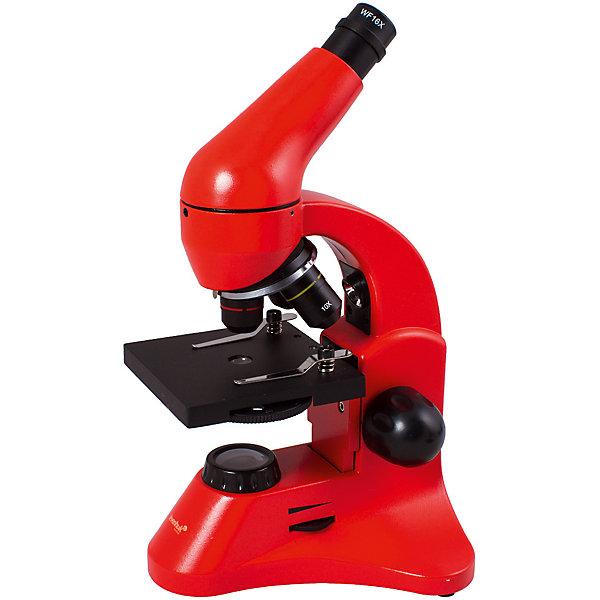 Микроскоп Levenhuk Rainbow 50L PLUS Orange\АпельсинМикроскопы<br>Характеристики товара:<br><br>• материал: металл, пластик<br>• увеличение: до 1280 крат<br>• набор для опытов в комплекте<br>• прочный металлический корпус<br>• подсветка: светодиод<br>• лампа работает от батареек 3хАА<br>• комплектация: микроскоп, объективы: 4х, 10х и 40хs, окуляр: WF10x–16x, предметный столик с зажимами, диск с диафрагмами, конденсор, встроенные нижний и верхний осветители на светодиодах, сетевой адаптер (питание 220 В, 50 Гц), инструкция по эксплуатации и гарантийный талон, пинцет, инкубатор для артемии, микротом, флакон с дрожжами, флакон со смолой для изготовления препаратов, флакон с морской солью, флакон с артемией (морским рачком), 5 готовых образцов и 5 чистых предметных стекол, пипетка, пылезащитный чехол<br>• тип насадки: монокулярная<br>• страна бренда: США<br>• страна производства: КНР<br><br>Собственный микроскоп - это отличный способ заинтересовать ребенка наукой и привить ему интерес к учебе. Эта модель микроскопа была разработана специально для детей - он позволяет увеличивать препарат в 1280 крат, с помощью этого дети могут исследовать состав и структуру разнообразных предметов, веществ и организмов. Благодаря стильному дизайну этот микроскоп отлично вписывается в интерьер!<br><br>Оптические приборы от американской компании Levenhuk уже успели зарекомендовать себя как качественная и надежная продукция. Для их производства используются только безопасные и проверенные материалы. Такой прибор способен прослужить долго. Подарите ребенку интересную и полезную вещь!<br><br>Микроскоп Rainbow 50L PLUS Orange\Апельсин от известного бренда Levenhuk (Левенгук) можно купить в нашем интернет-магазине.<br>Ширина мм: 180; Глубина мм: 405; Высота мм: 270; Вес г: 3240; Возраст от месяцев: 60; Возраст до месяцев: 2147483647; Пол: Унисекс; Возраст: Детский; SKU: 5435283;