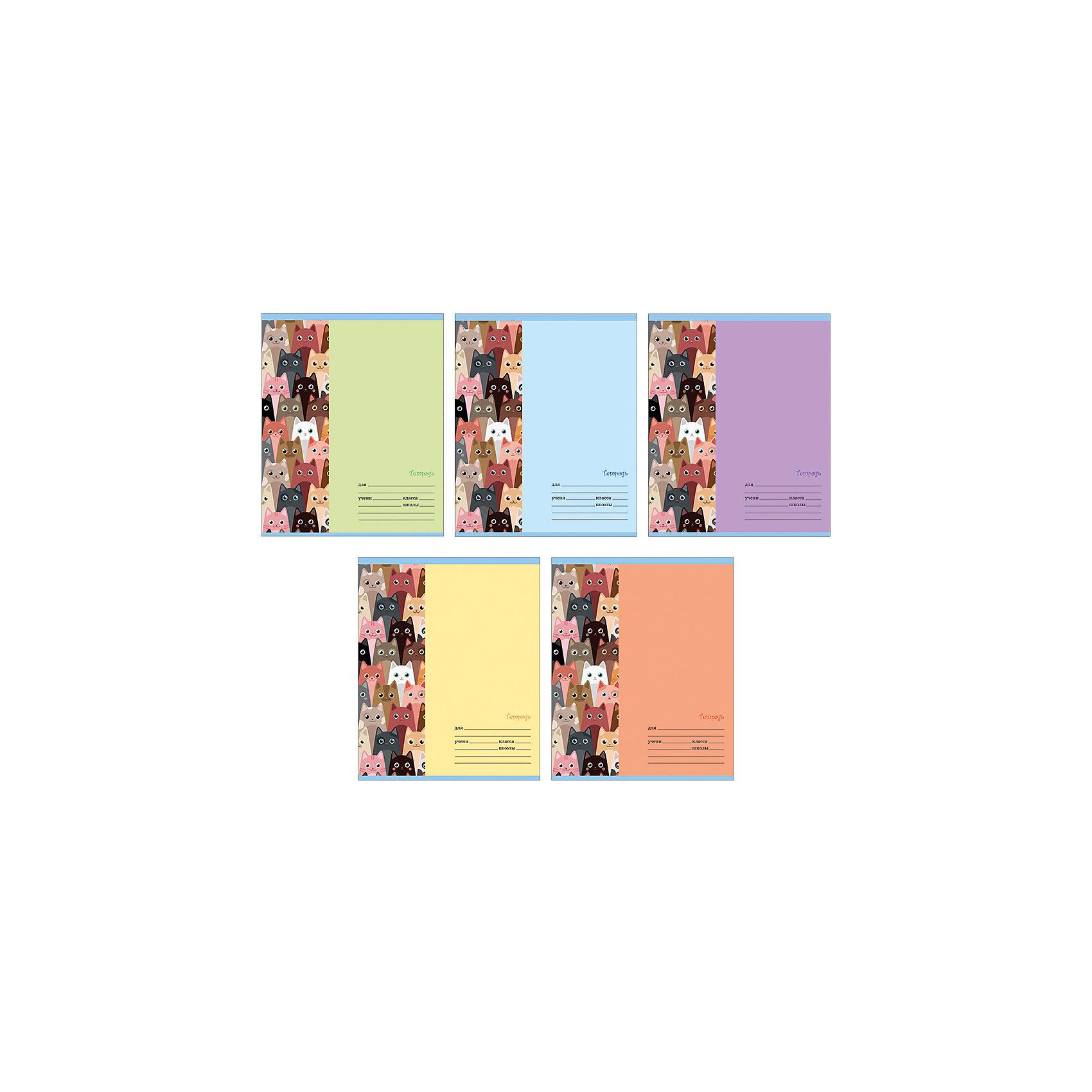 Комплект тетрадей Кошка (10 шт), 24 листа, Канц-ЭксмоХарактеристики комплекта тетрадей Кошка:<br><br>• размеры: 20.2х16.3х3.5 см<br>• количество листов: 24 шт.<br>• разлиновка: линейка<br>• формат: А 5 <br>• комплектация: тетрадь<br>• бумага: офсет, плотностью 60 г/м2.<br>• бренд: Канц-Эксмо<br>• страна бренда: Россия<br>• страна производителя: Россия<br><br>Комплект тетрадей Кошка от российского производителя Канц-Эксмо выполнен в формате А5. Количество листов 24, тетради в линейку с полями. Крепление: скрепка. Обложка у изделий плотная - мелованный картон, выборочный лак.<br><br>Комплект тетрадей Кошка от российского производителя Канц-Эксмо можно купить в нашем интернет-магазине.<br><br>Ширина мм: 202<br>Глубина мм: 163<br>Высота мм: 40<br>Вес г: 66<br>Возраст от месяцев: 72<br>Возраст до месяцев: 2147483647<br>Пол: Женский<br>Возраст: Детский<br>SKU: 5448403