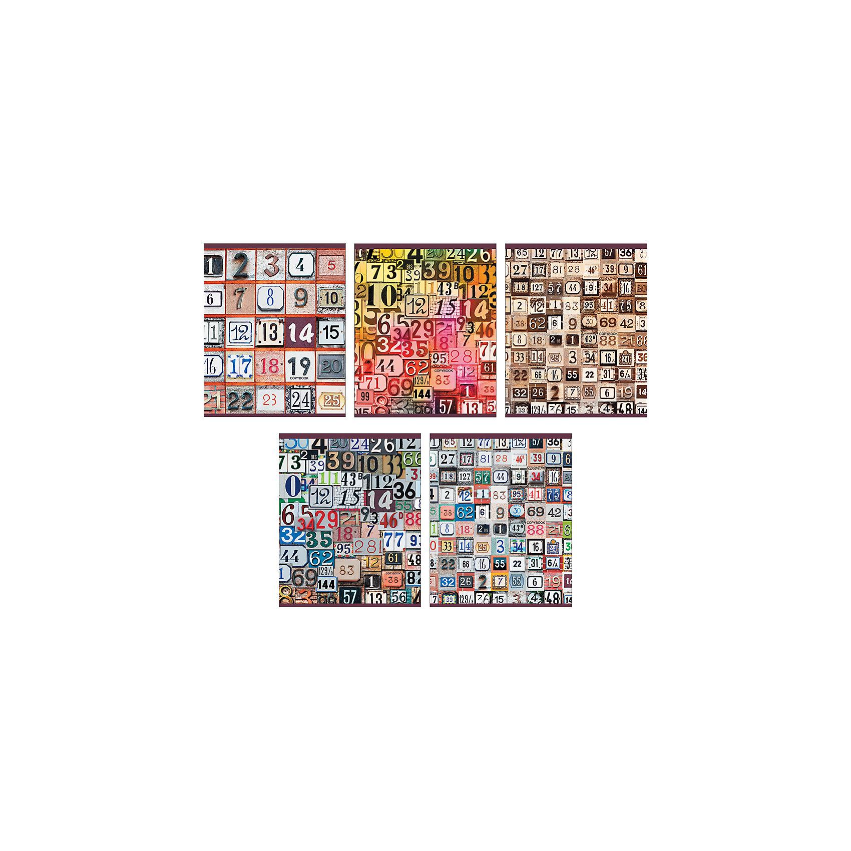 Комплект тетрадей Магия чисел (10 шт), 48 листов, Канц-ЭксмоБумажная продукция<br>Характеристики комплекта тетрадей Магия чисел:<br><br>• размеры: 20.2х16.3х3.5 см<br>• количество листов: 48 шт.<br>• разлиновка: клетка<br>• формат: А 5 <br>• комплектация: тетрадь<br>• бумага: офсет, плотностью 60 г/м2.<br>• обложка: мелованный картон, печать по металлизированной пленке Серебро, сплошной глянцевый лак.<br>• бренд: Канц-Эксмо<br>• страна бренда: Россия<br>• страна производителя: Россия<br><br>Комплект тетрадей Магия чисел от производителя Канц-Эксмо выполнен в формате А5. Количество листов 48, тетради в клетку с полями. Крепление: скрепка. Обложка у изделий плотная - мелованный картон, выборочный лак <br><br>Комплект тетрадей Магия чисел от производителя Канц-Эксмо можно купить в нашем интернет-магазине.<br><br>Ширина мм: 202<br>Глубина мм: 163<br>Высота мм: 40<br>Вес г: 103<br>Возраст от месяцев: 72<br>Возраст до месяцев: 2147483647<br>Пол: Унисекс<br>Возраст: Детский<br>SKU: 5448408