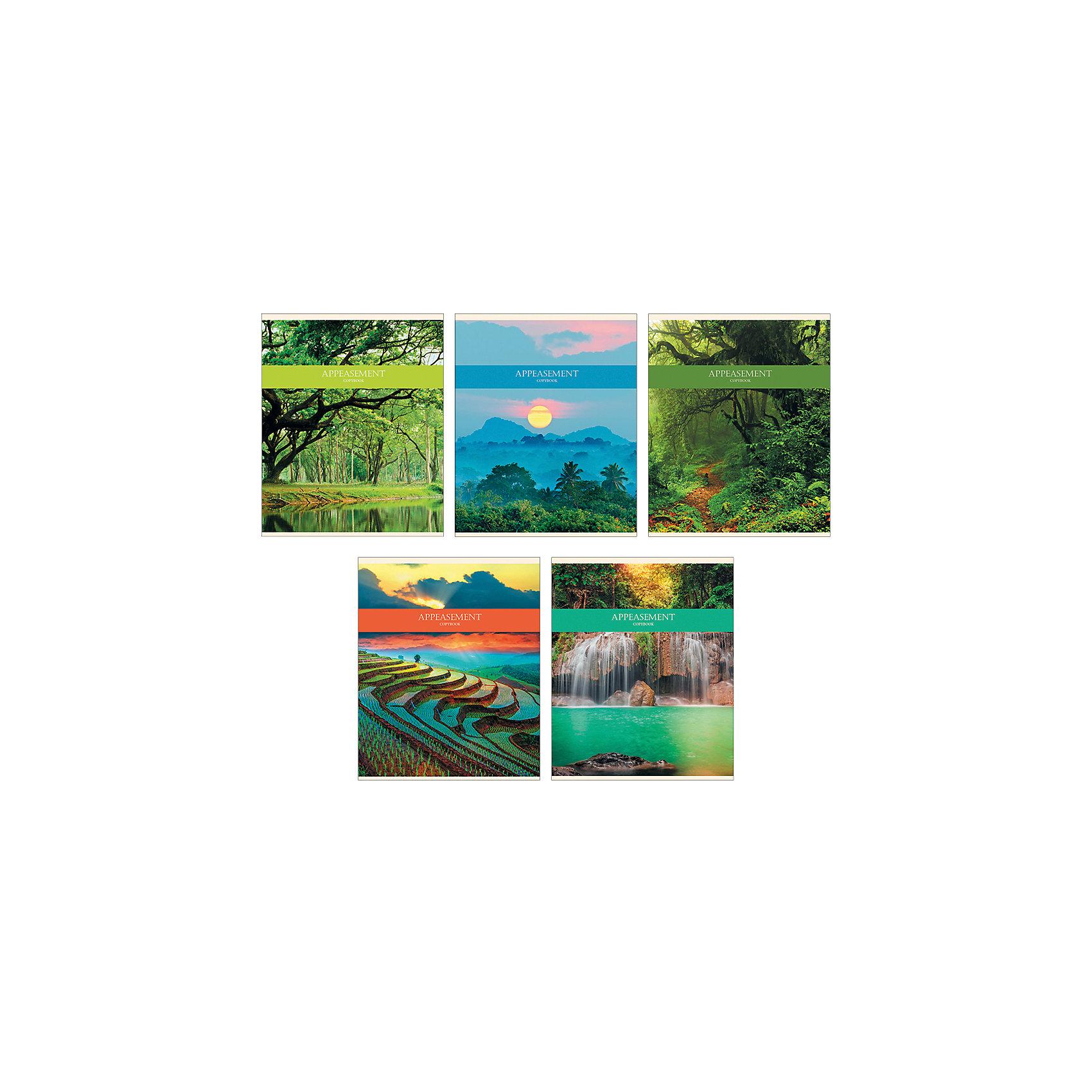 Комплект тетрадей Природная гармония (10 шт), 48 листов, Канц-ЭксмоХарактеристики комплекта тетрадей Природная гармония:<br><br>• размеры: 20.2х16.3х3.5 см<br>• количество листов: 48 шт.<br>• разлиновка: линейка<br>• формат: А 5 <br>• комплектация: тетрадь<br>• бумага: офсет, плотностью 60 г/м2.<br>• обложка: мелованный картон<br>• бренд: Канц-Эксмо<br>• страна бренда: Россия<br>• страна производителя: Россия<br><br>Комплект тетрадей Природная гармония от производителя Канц-Эксмо выполнен в формате А5. Количество листов 48, тетради в линейку с полями. Крепление: скрепка. Обложка у изделий плотная - мелованный картон, выборочный лак <br><br>Комплект тетрадей Природная гармония от производителя Канц-Эксмо можно купить в нашем интернет-магазине.<br><br>Ширина мм: 202<br>Глубина мм: 165<br>Высота мм: 40<br>Вес г: 103<br>Возраст от месяцев: 72<br>Возраст до месяцев: 2147483647<br>Пол: Женский<br>Возраст: Детский<br>SKU: 5448415