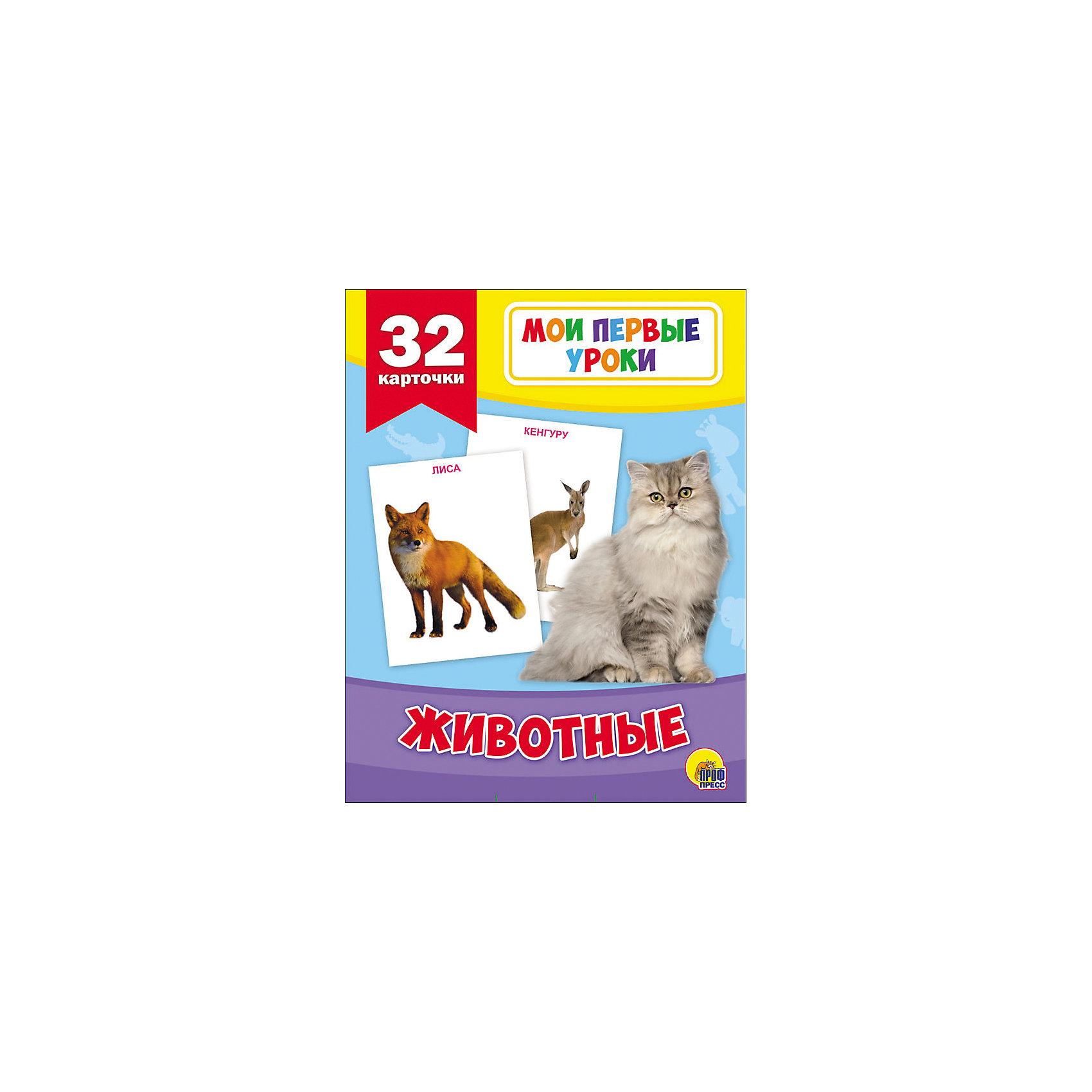 Развивающие карточки  Мои первые урокиОбучающие карточки<br>Развивающие карточки Мои первые уроки.<br><br>Характеристики:<br><br>• Редактор: Грищенко Виктория<br>• Издательство: Проф-Пресс, 2016 г.<br>• Серия: Мои первые уроки<br>• Иллюстрации: цветные<br>• Количество карточек: 32 (картон)<br>• Упаковка: картонный блистер с европодвесом<br>• Размер упаковки: 184х114х18 мм.<br>• Вес: 138 гр.<br>• ISBN: 9785378268771<br><br>Развивающие карточки серии Мои первые уроки познакомят ребёнка с интересными фактами о животных. Яркие фотографии помогут улучшить восприятие информации. Самое главное, что эти уроки будут проходить в отвлечённой игровой форме. Для детей дошкольного возраста.<br><br>Развивающие карточки Мои первые уроки можно купить в нашем интернет-магазине.<br><br>Ширина мм: 185<br>Глубина мм: 117<br>Высота мм: 114<br>Вес г: 0<br>Возраст от месяцев: 36<br>Возраст до месяцев: 2147483647<br>Пол: Унисекс<br>Возраст: Детский<br>SKU: 5452299