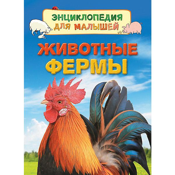 Энциклопедия для малышей Животные фермыДетские энциклопедии<br>Характеристики:<br>• количество страниц: 32;<br>• иллюстрации: цветные;<br>• переплёт: твёрдый;<br>• формат: 22х16х5х0,7 см;<br>• вес: 178 грамм;<br>• ISBN: 9785353080183.<br><br>Энциклопедия «Животные фермы» содержит познавательную информацию о жизни на ферме, сопровождающуюся красочными картинками и фотографиями. Ребенок познакомится с сельскохозяйственными животными и их особенностями. Кроме того, малыш узнает, как ухаживают за животными и какими чертами характера они отличаются.<br><br>Повествование сопровождается красочными рисунками и фотографиями.<br><br>Изучение энциклопедии поможет развить память и расширить кругозор.<br><br>Энциклопедию для малышей Животные фермы, Rosman (Росмэн) можно купить в нашем интернет-магазине.<br><br>Ширина мм: 220<br>Глубина мм: 167<br>Высота мм: 70<br>Вес г: 190<br>Возраст от месяцев: 36<br>Возраст до месяцев: 2147483647<br>Пол: Унисекс<br>Возраст: Детский<br>SKU: 5453589