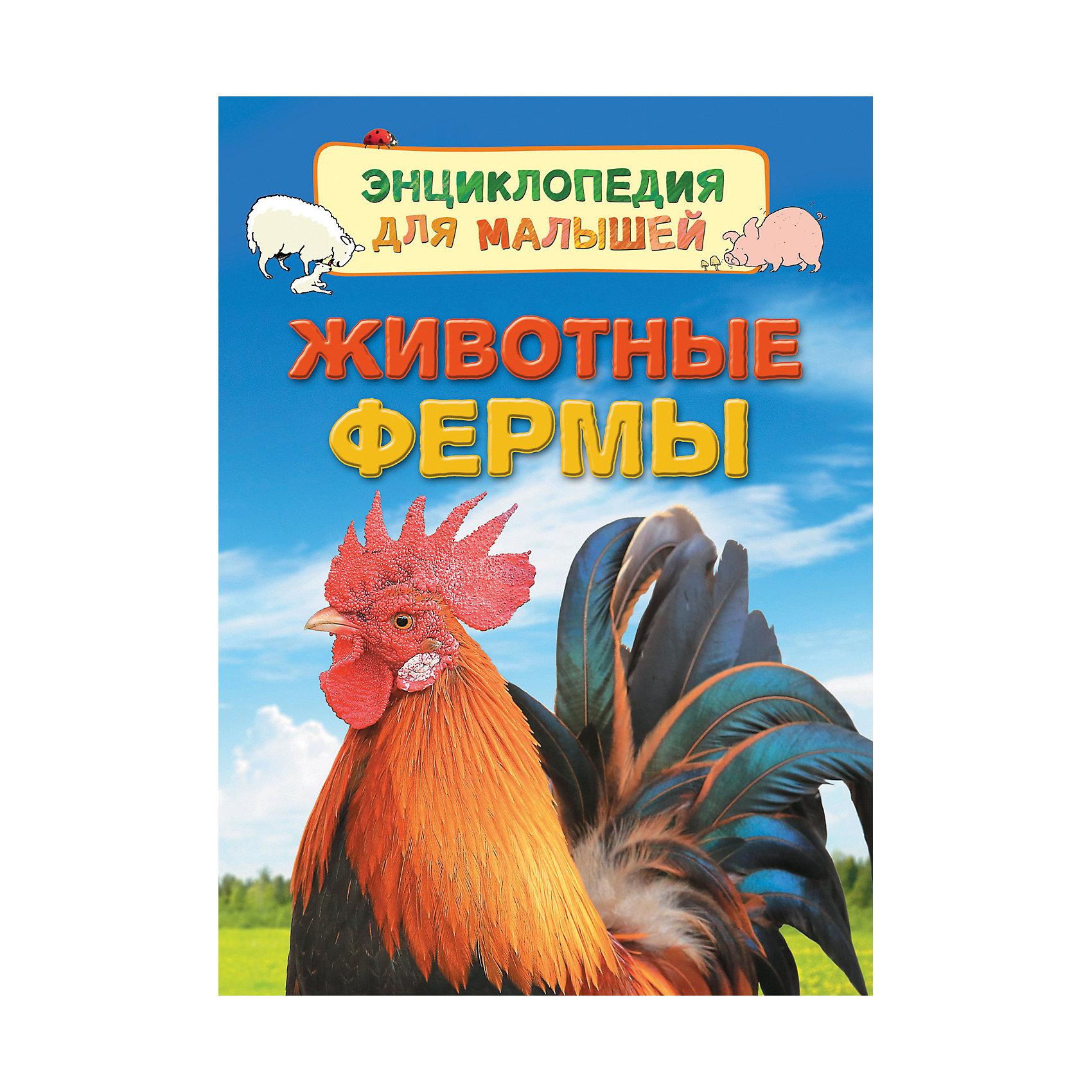 Энциклопедия для малышей Животные фермыЭнциклопедии о животных<br>В книге рассказывается о сельскохозяйственных животных. Маленькие читатели узнают, что такое ферма и с какой целью на ней разводят животных, как вылупляются цыплята, почему свиньи валяются в грязи, зачем стригут овец, надевают страусу колпак и подкладывают гусиные яйца курице.<br><br>Ширина мм: 220<br>Глубина мм: 167<br>Высота мм: 70<br>Вес г: 190<br>Возраст от месяцев: 36<br>Возраст до месяцев: 2147483647<br>Пол: Унисекс<br>Возраст: Детский<br>SKU: 5453589