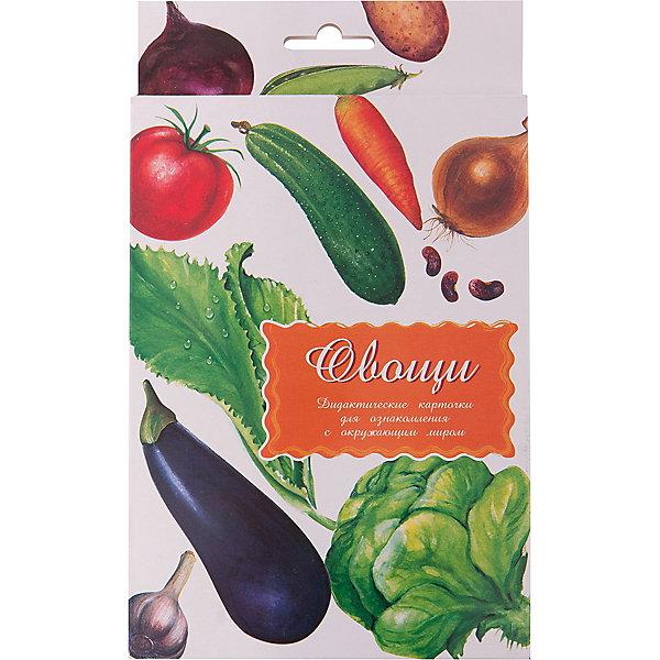 Дидактические карточки Овощи, Маленький генийОбучающие карточки<br>Дидактические карточки Овощи, Маленький гений.<br><br>Характеристики:<br><br>• Художник: Подколзин Евгений<br>• Количество карточек: 16<br>• Размер карточек: 25х15 см.<br>• Материал: картон<br>• Упаковка: картонный блистер с европодвесом<br>• Размер упаковки: 25,3х15,1х1 см.<br><br>Дидактические карточки познакомят малыша с некоторыми самыми известными овощами: свеклой, огурцом, помидором, баклажаном, луком, картофелем, капустой, морковью, горохом, фасолью, кабачком, салатом, цветной капустой, чесноком, редисом и сладким перцем. Всего в набор входит 16 карточек. На каждой карточке дано крупное, яркое и реалистичное изображение овоща, а на обратной стороне его описание: внешний вид и строение, способы употребления в пищу, места произрастания, приносимая человеку польза, интересные факты и загадка. <br><br>Совсем маленькому ребенку можно просто показывать карточки и называть овощи. А затем попросить малыша найти карточку с заданным предметом и назвать его. Можно сортировать овощи, например, по цвету. Если ребенок учится читать, можно отрезать названия и, перемешав, предложить ребенку подобрать картинки к названиям. <br><br>С карточками можно организовать и множество игр на развитие внимания, логического мышления и памяти. Игра «Четвертый лишний»: из четырех карточек, одна из которых отличается от трех других, ребенок должен выбрать лишнюю и объяснить свой выбор. Можно по очереди с ребенком отвечать на вопрос «Какой?» относительно каждой карточки, стараясь дать больше ответов. <br><br>Разглядывая карточки, играя с ними, ваш малыш не только обогатит свой багаж знаний об окружающем мире, но и научится составлять предложения, беседовать по картинкам, классифицировать и систематизировать предметы. Карточки рекомендуются родителям, логопедами, психологами, воспитателями детских садов, учителями начальных классов для познавательных игр с детьми и занятий по методике Глена Домана.<br><br>Дидактические карточки