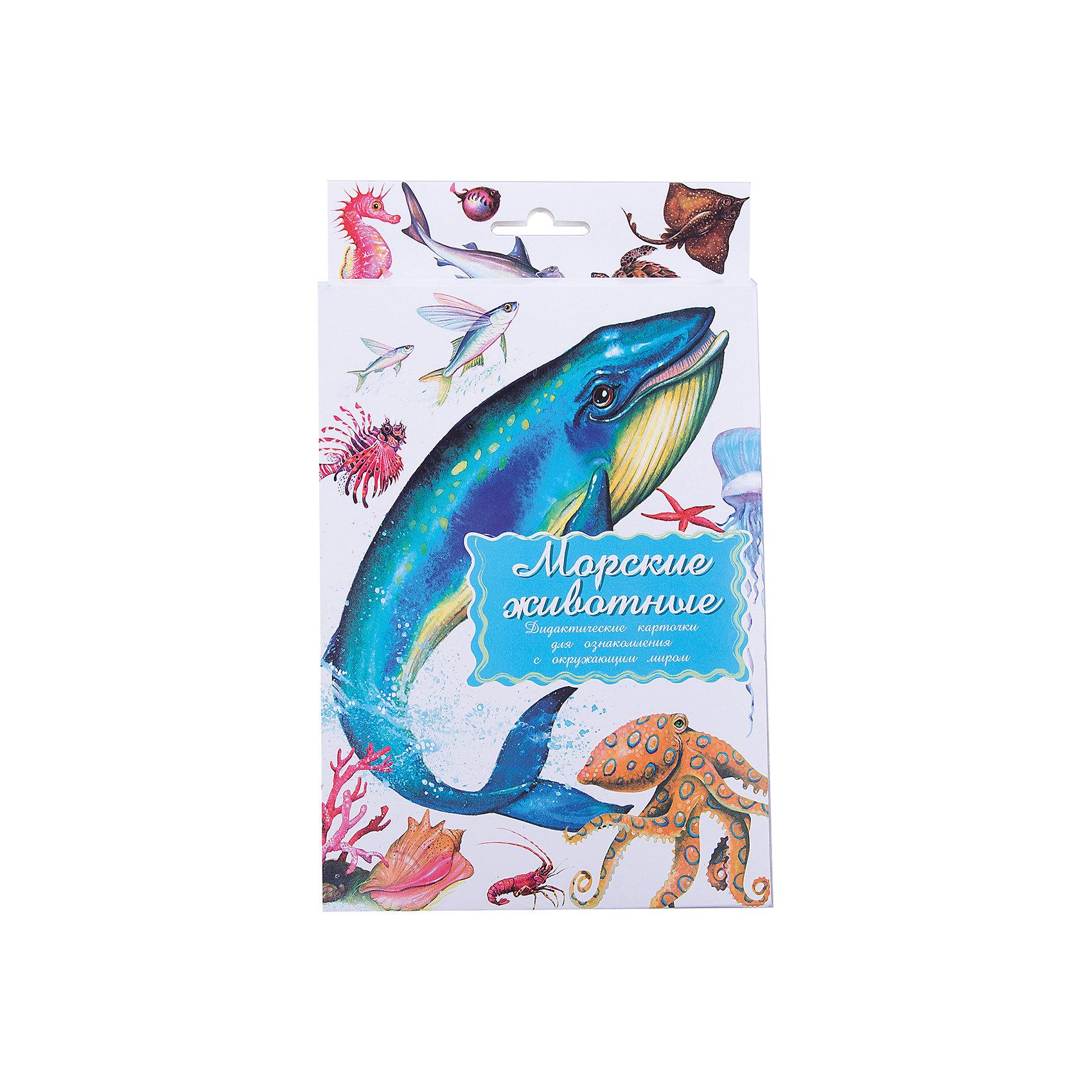Дидактические карточки Морские обитатели, Маленький генийОбучающие карточки<br>Дидактические карточки Морские обитатели, Маленький гений.<br><br>Характеристики:<br><br>• Художник: Подколзин Евгений<br>• Количество карточек: 16<br>• Размер карточек: 25х15 см.<br>• Материал: картон<br>• Упаковка: картонный блистер с европодвесом<br>• Размер упаковки: 25,2х15,1х1 см.<br><br>Дидактические карточки с крупными яркими картинками познакомят малыша с некоторыми самыми известными морскими обитателями: китом, акулой, летучей рыбой, дельфином, морской звездой, португальским корабликом, скатом, осьминогом, рыбой-шаром, морским коньком, черепахой Биссой, рыбой-молотом, лангустом, кораллами, кальмаром, скорпеной. Всего в набор входит 16 карточек. На одной стороне каждой карточки изображено животное, а на обратной стороне дано его описание: внешний вид, места обитания, повадки, интересные факты. <br><br>Совсем маленькому ребенку можно просто показывать карточки и называть морских обитателей. Когда он запомнит их можно просить его найти карточку с тем или иным животным или назвать животное, которое Вы ему показываете. Можно сортировать морских обитателей, например, опасных и безобидных. Если ребенок учится читать, можно отрезать названия и, перемешав, предложить ребенку подобрать картинки к названиям. <br><br>С карточками можно организовать и множество игр на развитие внимания, логического мышления и памяти. Игра «Четвертый лишний»: из четырех карточек, одна из которых отличается от трех других, ребенок должен выбрать лишнюю и объяснить свой выбор. Можно по очереди с ребенком отвечать на вопрос «Какой?» относительно каждой карточки, стараясь дать больше ответов. <br><br>Разглядывая карточки, играя с ними, ваш малыш не только обогатит свой багаж знаний об окружающем мире, но и научится составлять предложения, беседовать по картинкам, классифицировать и систематизировать предметы. Карточки рекомендуются родителям, логопедами, психологами, воспитателями детских садов, учителями начальн