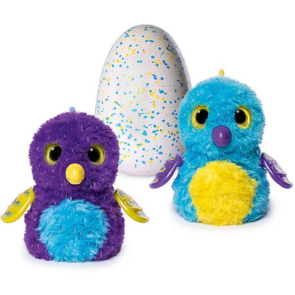 Интерактивная игрушка Spin Master Hatchimals Пингвинчик (голубой/фиолетовый)Интерактивные животные<br>Характеристики товара:<br><br>• возраст: от 5 лет;<br>• материал: пластик;<br>• в комплекте: питомец, яйцо, инструкция;<br>• тип батареек: 2 батарейки АА;<br>• наличие батареек: в комплекте демонстрационные;<br>• размер упаковки: 25х20х15 см;<br>• вес упаковки: 500 гр.;<br>• страна производитель: Китай.<br><br>Интерактивный питомец Hatchimals «Пингвинчик» - удивительная игрушка, которая растет и развивается. А ребенку предстоит ухаживать за своим питомцем, играть с ним, кормить. У пингвиненка 3 стадии — новорожденный, малыш, птенец.<br><br>Находится он в яйце. Световые индикаторы подсказывают, чем он в этот момент занят. Как только он захочет вылупиться, он начнет стучать клювом. Тогда нужно помочь ему и потереть нижнюю часть яйца. С вылупившимся пингвиненком можно играть, кормить его, согревать, танцевать, научить его ходить и много других интерактивных функций.<br><br>Интерактивного питомца Hatchimals «Пингвинчик» можно приобрести в нашем интернет-магазине.<br>Ширина мм: 258; Глубина мм: 205; Высота мм: 147; Вес г: 910; Возраст от месяцев: 60; Возраст до месяцев: 108; Пол: Унисекс; Возраст: Детский; SKU: 5470461;