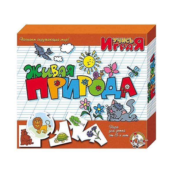 Игра обучающая  Живая природа, Десятое королевствоИзучаем цвета и формы<br>Игра обучающая Живая природа, Десятое королевство<br><br>Характеристики:<br><br>• Возраст: от 3 лет<br>• Количество игроков: от 1 до 10<br>• В комплекте: 10 карточек заданий, 4 карточки с ответами<br><br>В этой увлекательной обучающей игре могут участвовать одновременно от 1 до 10 детей! В наборе содержатся 10 карточек-заданий, на которых изображены рисунки по теме «живая природа». К каждой необходимо найти 4 карточки-ответа, чтобы дополнить их содержание. В процессе игры дети познают животный и растительный мир, развивают логическое мышление и память, работают над мелкой моторикой и расширяют свои знания и представления об окружающем мире.<br><br>Игра обучающая Живая природа, Десятое королевство можно купить в нашем интернет-магазине.<br><br>Ширина мм: 230<br>Глубина мм: 200<br>Высота мм: 35<br>Вес г: 230<br>Возраст от месяцев: 84<br>Возраст до месяцев: 2147483647<br>Пол: Унисекс<br>Возраст: Детский<br>SKU: 5471676