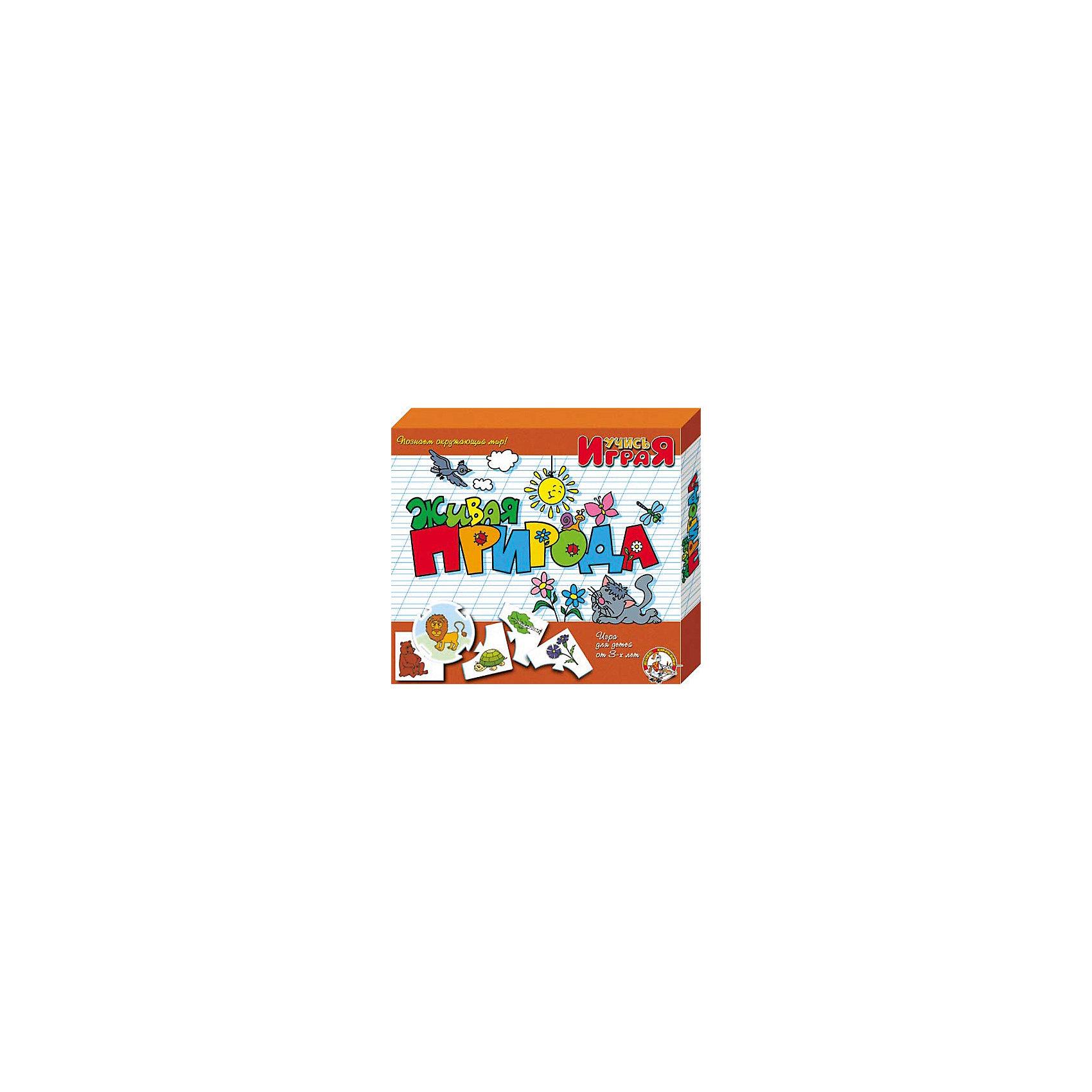 Игра обучающая  Живая природа, Десятое королевствоИгра обучающая Живая природа, Десятое королевство<br><br>Характеристики:<br><br>• Возраст: от 3 лет<br>• Количество игроков: от 1 до 10<br>• В комплекте: 10 карточек заданий, 4 карточки с ответами<br><br>В этой увлекательной обучающей игре могут участвовать одновременно от 1 до 10 детей! В наборе содержатся 10 карточек-заданий, на которых изображены рисунки по теме «живая природа». К каждой необходимо найти 4 карточки-ответа, чтобы дополнить их содержание. В процессе игры дети познают животный и растительный мир, развивают логическое мышление и память, работают над мелкой моторикой и расширяют свои знания и представления об окружающем мире.<br><br>Игра обучающая Живая природа, Десятое королевство можно купить в нашем интернет-магазине.<br><br>Ширина мм: 230<br>Глубина мм: 200<br>Высота мм: 35<br>Вес г: 230<br>Возраст от месяцев: 84<br>Возраст до месяцев: 2147483647<br>Пол: Унисекс<br>Возраст: Детский<br>SKU: 5471676