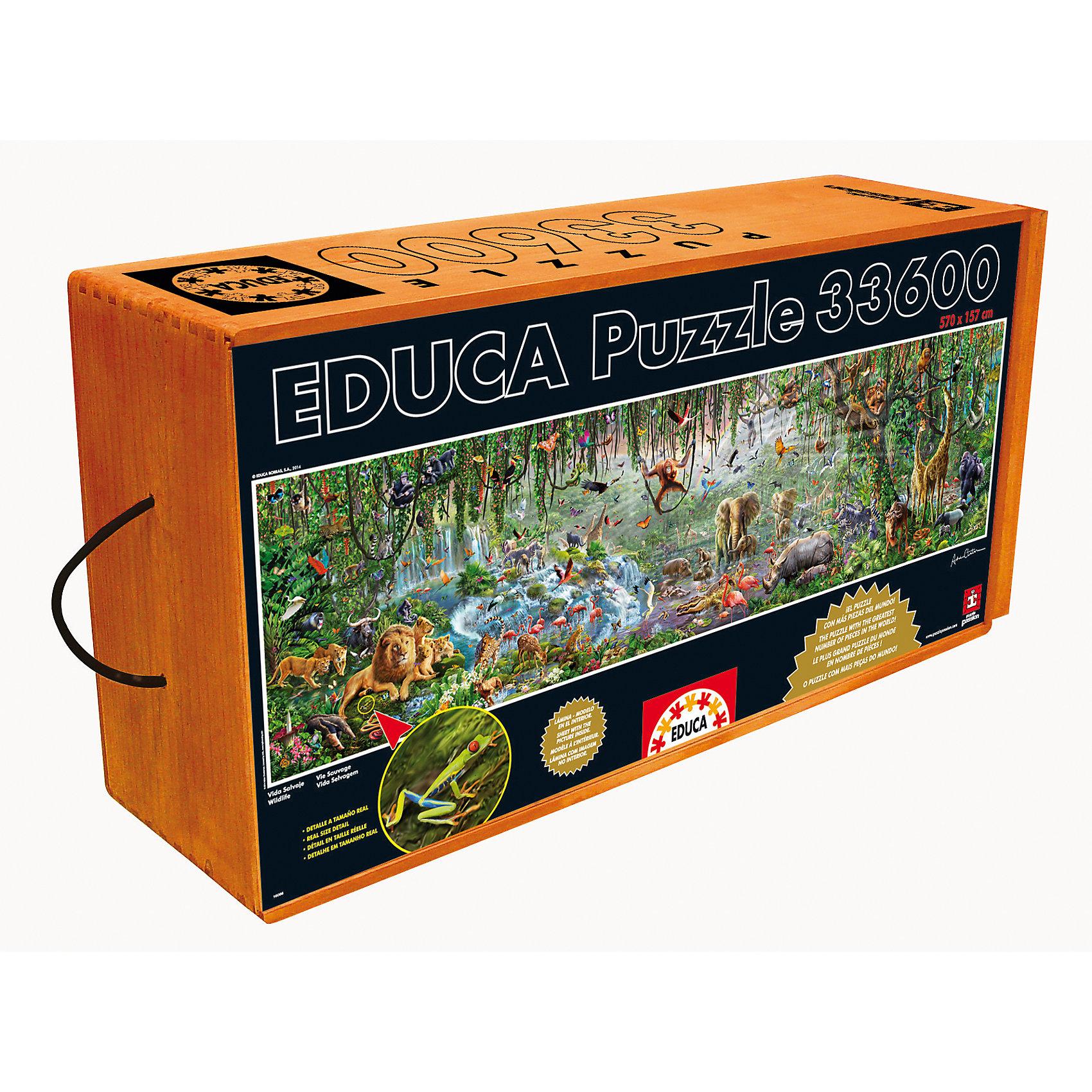 Пазл Джунгли, 33600 деталей, EducaКлассические пазлы<br>Самый большой пазл  мире с количеством деталей 33.600. Размер собранного пазла: 5,7*1,57 м. Пазл от Educa Дикая природа или Джунгли, это самый большой пазл в мире на данный момент. Упакованный в деревянный ящик, внутри которого 10 коробок по 3360 деталей, этот пазл станет не просто подарком, а знаменательным событием.<br><br>Ширина мм: 780<br>Глубина мм: 380<br>Высота мм: 213<br>Вес г: 20000<br>Возраст от месяцев: 144<br>Возраст до месяцев: 2147483647<br>Пол: Унисекс<br>Возраст: Детский<br>SKU: 5478579