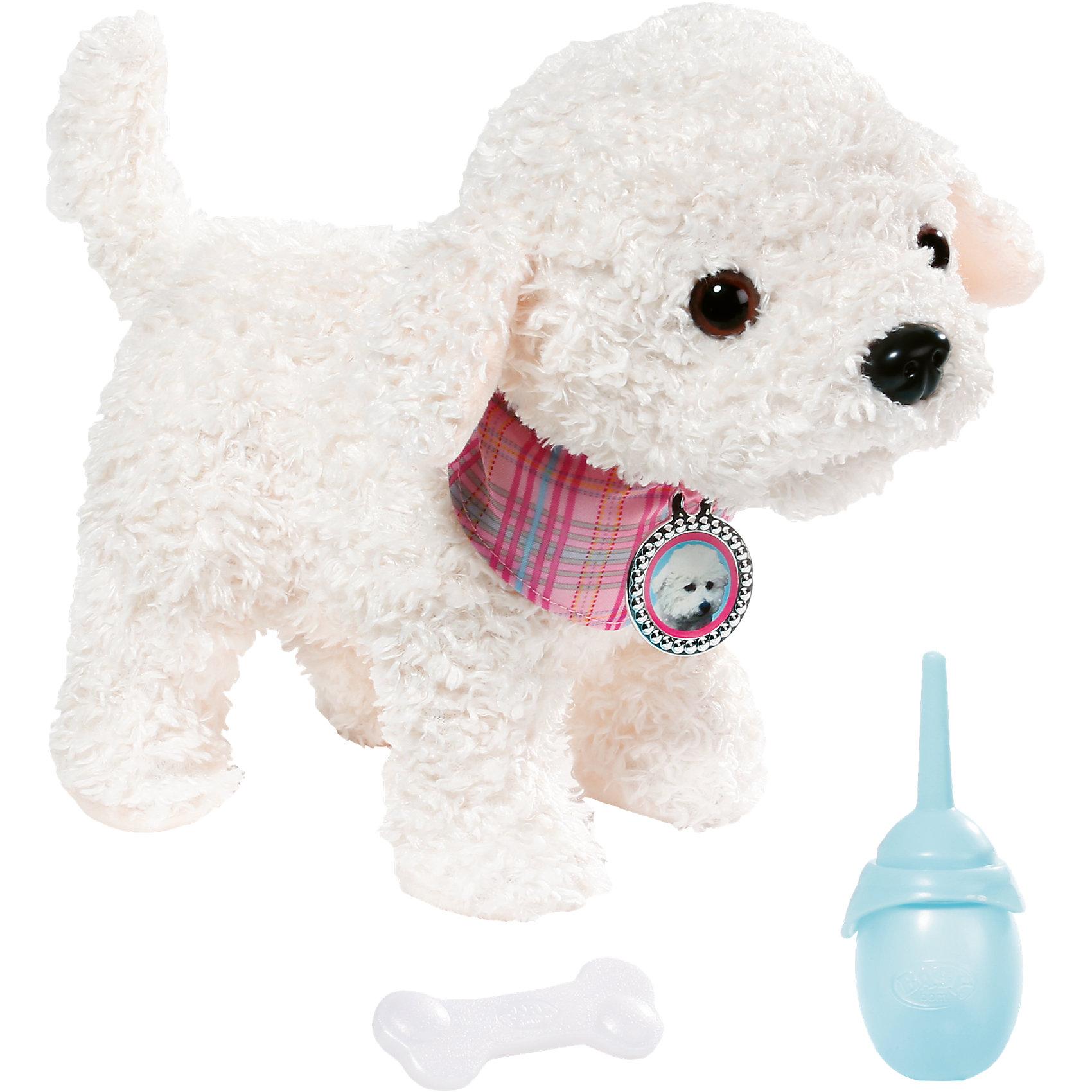 Собака Пудель, BABY bornИнтерактивные мягкие игрушки<br>Собака Пудель, BABY born <br><br>Характеристики:<br><br>• В набор входит: собака, косточка, бутылочка<br>• Состав: искусственный мех, пластик<br>• Элементы питания: батарейки, входят в комплект<br>• Размер упаковки: 25 * 23 * 24 см.<br>• Для детей в возрасте: от 3 лет<br>• Страна производитель: Китай<br><br>Белый пудель от создателей всемирно известных кукол BABY born (Бейби Бон) немецкого бренда Zapf Creation (Зап Криэйшен) станет отличным пополнением для любимой куклы и будет отличной отдельной игрушкой. С новым интерактивным пуделем ребёнок сможет продолжать свои игры, делая их ещё веселее. Когда этот щекастый белый пёсик с цветным ошейником закончит пить из своей бутылочки, он поднимет свою лапку чтобы пописать. Но этот пёсик с нежным плюшевым мехом не только пьёт воду, он также жуёт свою косточку, радостно причмокивая. <br><br>Собака Пудель, BABY born можно купить в нашем интернет-магазине.<br><br>Ширина мм: 230<br>Глубина мм: 250<br>Высота мм: 240<br>Вес г: 835<br>Возраст от месяцев: 36<br>Возраст до месяцев: 60<br>Пол: Женский<br>Возраст: Детский<br>SKU: 5478816