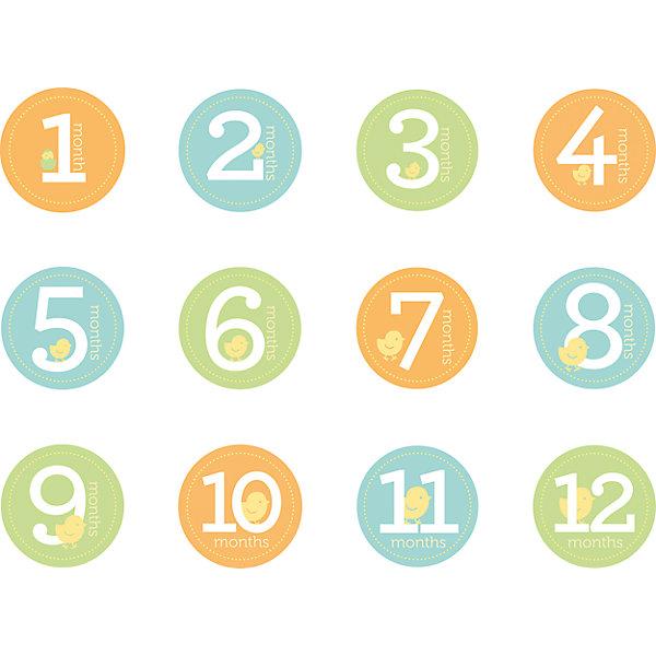 Стикеры от 1 до 12 мес, PearheadСоветчики для мам<br>Характеристики:<br><br>• Пол: универсальный<br>• Тематика рисунка: цифры<br>• Материал: бумага с клейкой стороной<br>• Комплектация: 12 стикеров с цифрами от 1 до 12<br>• Форма стикеров: круглая<br>• Диаметр стикеров: ?16 см<br>• Вес: 100 г <br>• Упаковка: картонная коробка<br><br>Стикеры от 1 до 12 мес, Pearhead от американского торгового бренда, который специализируется на создании подарочных наборов для новорожденных и их родителей. Набор включает в себя 12 круглых наклеек с изображенными на них цифрами от 1 до 12, выполненных в ярких цветах. Предназначены для наклеивания на одежду. <br><br>Стикеры выполнены из бумаги с клейкой основой, которая не оставляет следа на одежде, при этом надежно на ней крепится. Наклейки-стикеры позволят красочно, ярко и оригинально запечатлеть самые важные моменты первого года жизни вашего малыша. <br><br>Стикеры от 1 до 12 мес, Pearhead можно купить в нашем интернет-магазине.<br>Ширина мм: 180; Глубина мм: 15; Высота мм: 150; Вес г: 125; Возраст от месяцев: 0; Возраст до месяцев: 84; Пол: Унисекс; Возраст: Детский; SKU: 5482420;