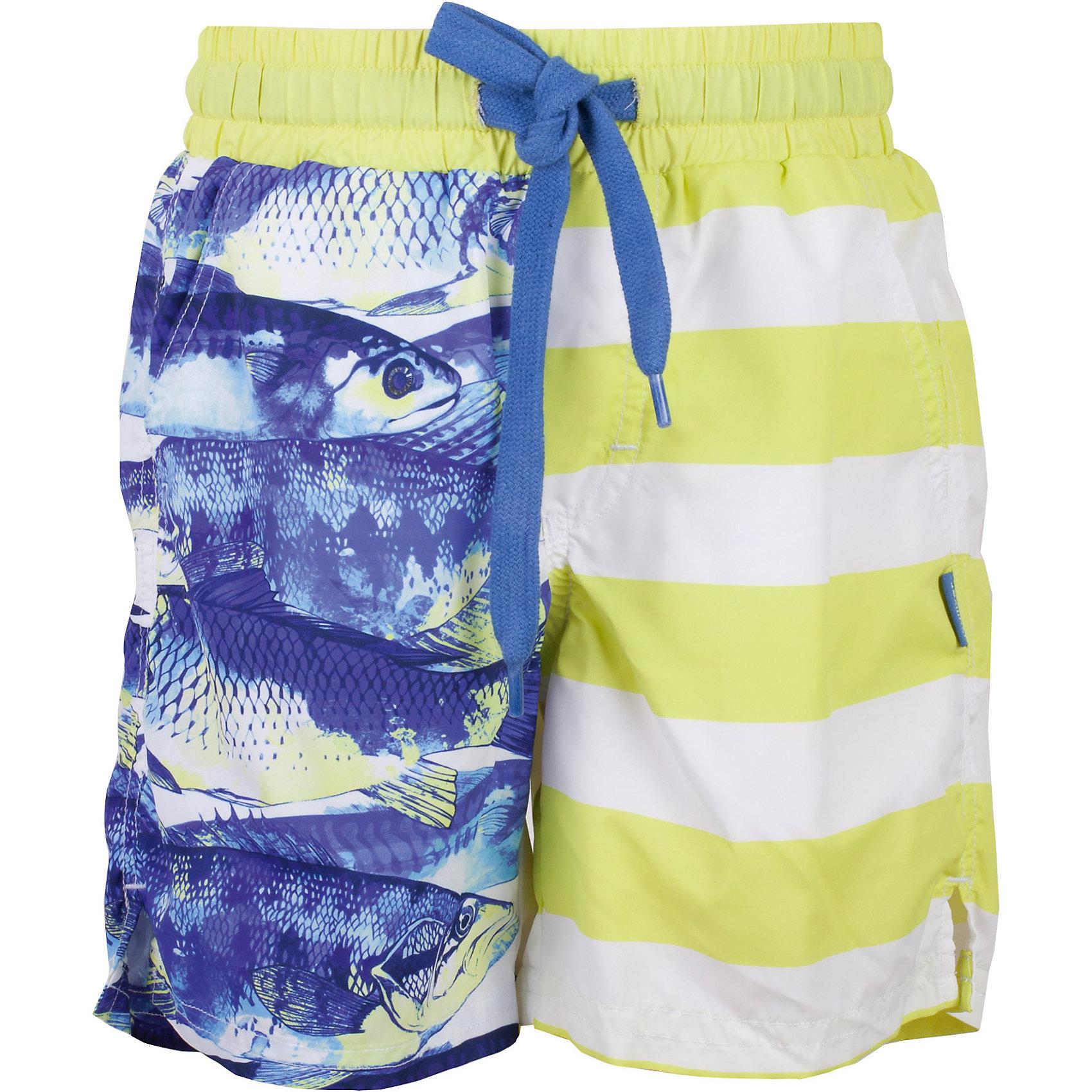 Шорты для мальчика GulliverЕсли вы планируете провести свой отпуск у моря, вам необходимо купить классные плавательные шорты для мальчика, ведь они - главная модель пляжного отдыха! Но помните, выбор плавок - ответственная задача! Они должны быть яркими, комфортными, удобными, не стеснять движений, быстро сохнуть и, главное, нравиться своему обладателю! Модные плавательные шорты с эффектной комбинацией крупной полоски и оригинального принта из коллекции Сардиния - отличный вариант для отдыха у воды!<br>Состав:<br>верх:               100% полиэстер; подкладка:                      100% полиэстер<br><br>Ширина мм: 191<br>Глубина мм: 10<br>Высота мм: 175<br>Вес г: 273<br>Цвет: зеленый<br>Возраст от месяцев: 96<br>Возраст до месяцев: 108<br>Пол: Мужской<br>Возраст: Детский<br>Размер: 134,122<br>SKU: 5482972