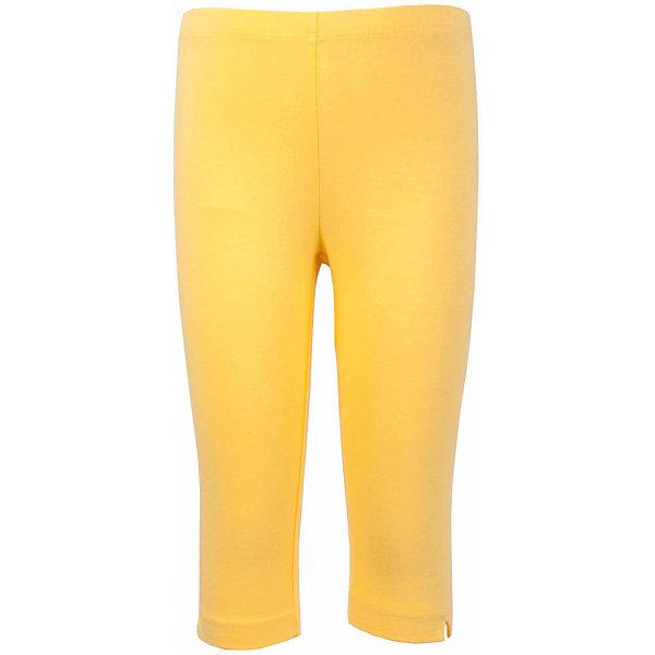 Леггинсы для девочки GulliverЛеггинсы<br>Характеристики товара:<br><br>• цвет: желтый<br>• материал: 95% хлопок 5% эластан<br>• укороченные<br>• мягкая резинка в поясе<br>• сезон: лето<br>• страна бренда: Российская Федерация<br>• страна производства: Китай<br><br>Яркие лосины жёлтого цвета для девочки от бренда Гулливер. Леггинсы укороченные, длина чуть ниже колена.<br><br>Леггинсы для девочки от известного бренда Gulliver можно купить в нашем интернет-магазине.<br><br>Ширина мм: 123<br>Глубина мм: 10<br>Высота мм: 149<br>Вес г: 209<br>Цвет: желтый<br>Возраст от месяцев: 36<br>Возраст до месяцев: 48<br>Пол: Женский<br>Возраст: Детский<br>Размер: 104,98,116,110<br>SKU: 5483544